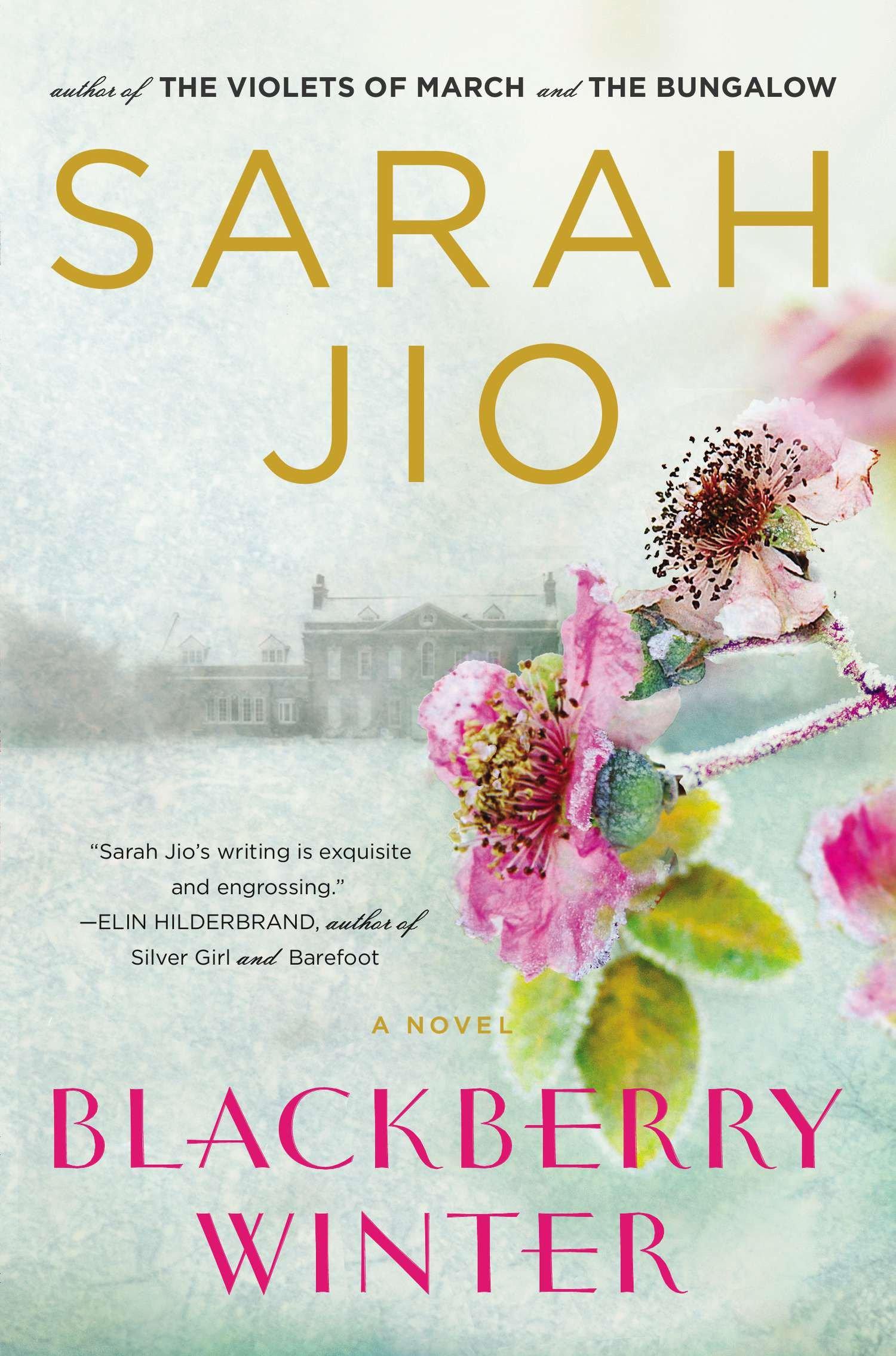 Blackberry Winter A Novel
