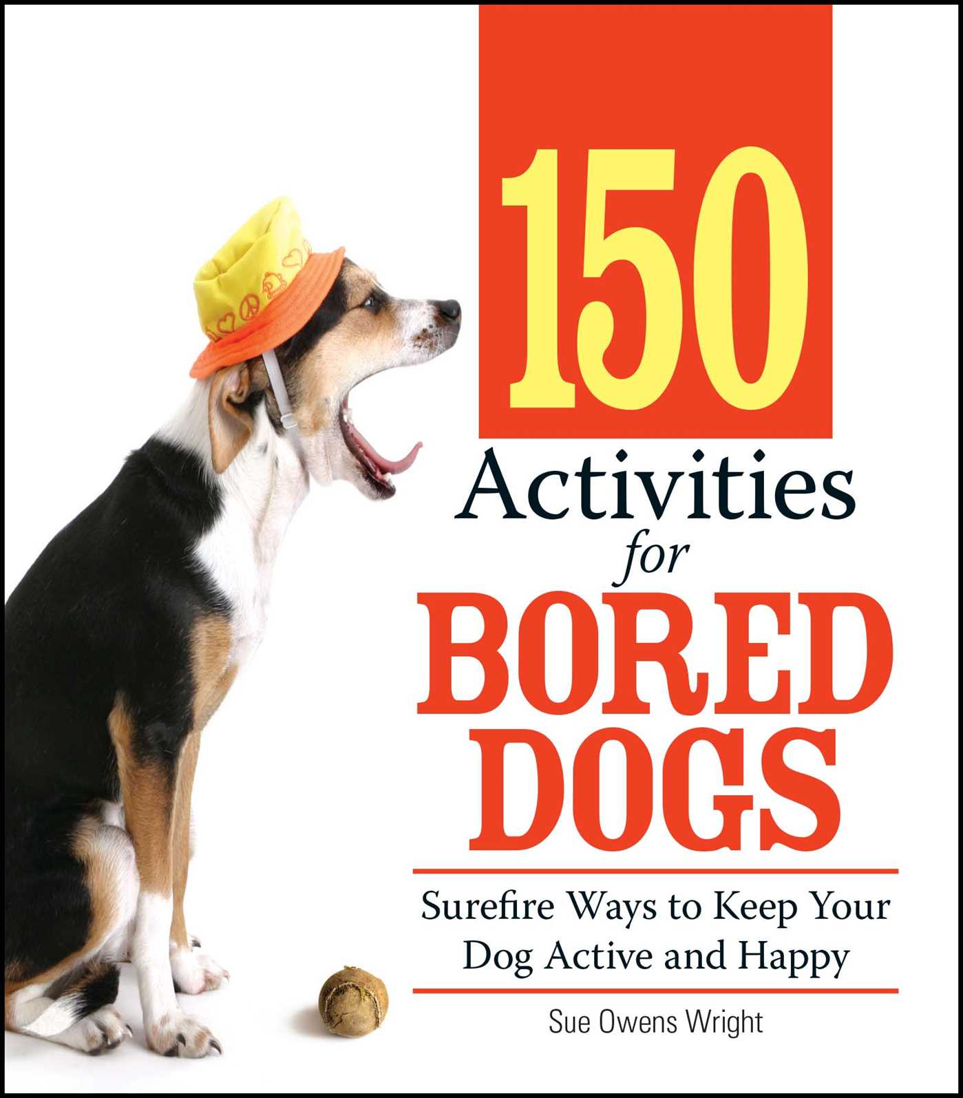 150 Activities For Bored Dogs Surefire Ways to Keep Your Dog Active and Happy