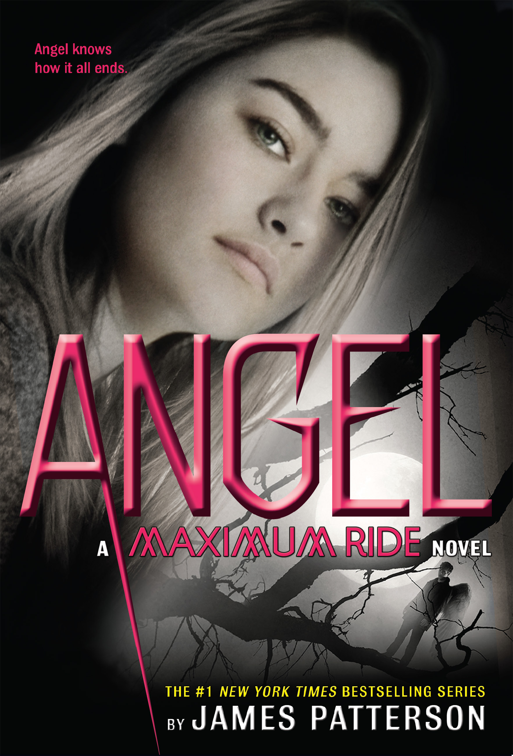 Angel A Maximum Ride Novel