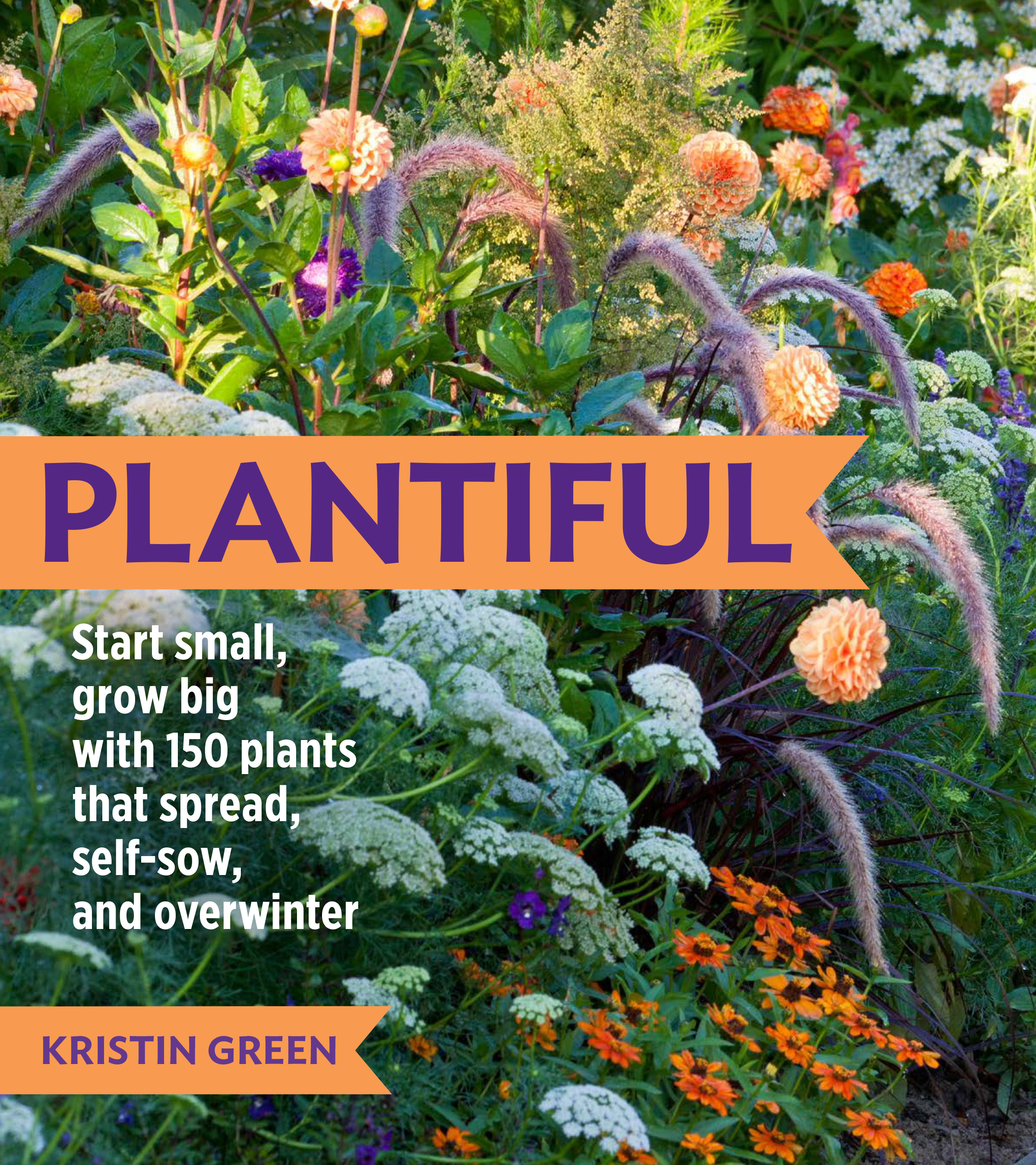 Plantiful start small, grow big with 150 plants that spread, self-sow, and overwinter
