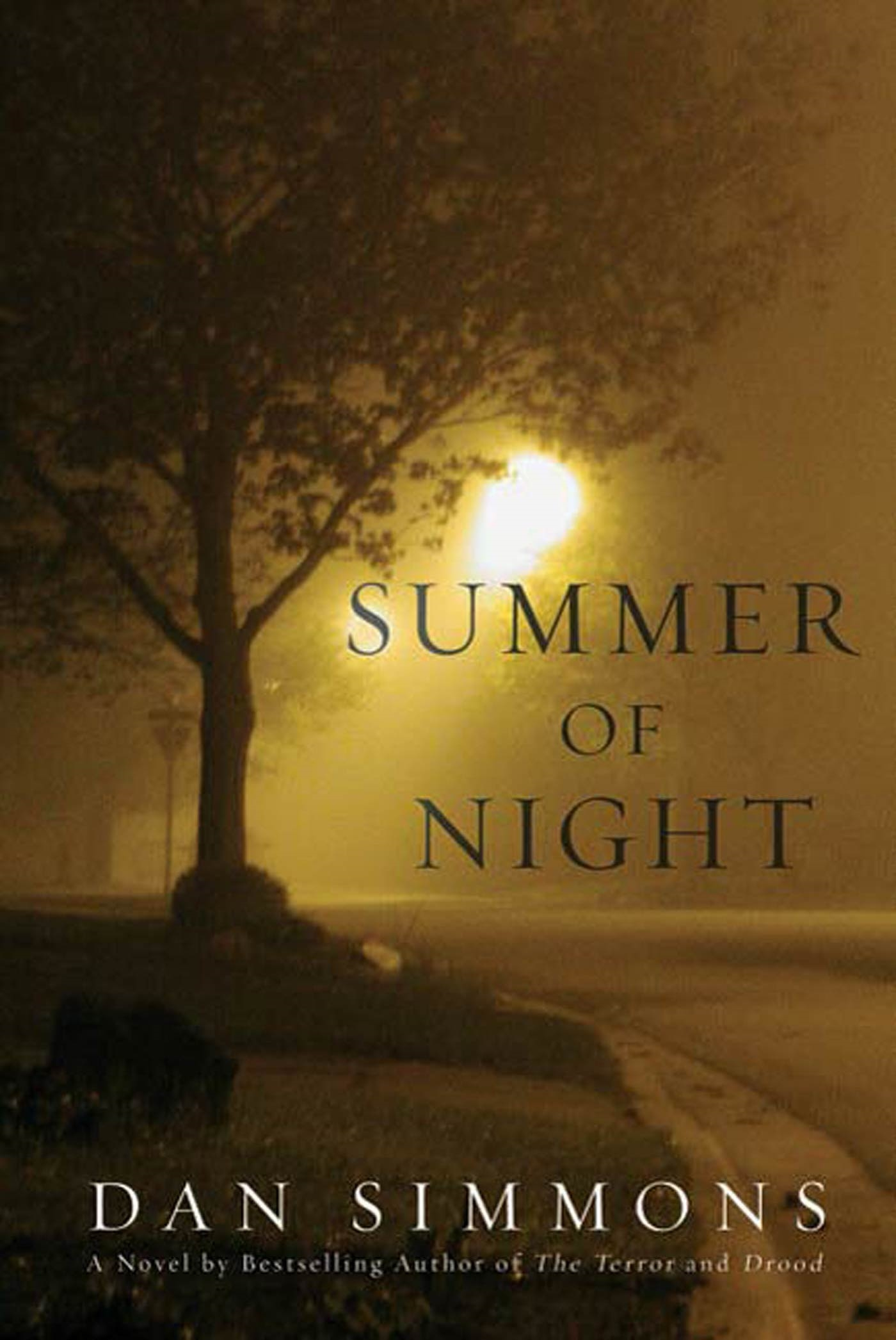 Summer of Night A Novel