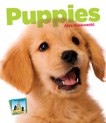 Cover image for Puppies [electronic resource] :