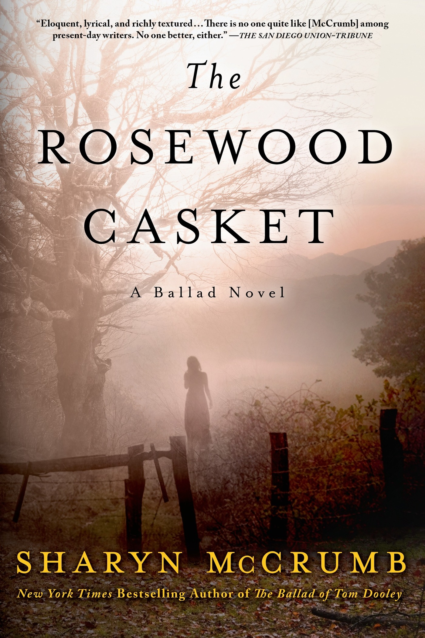 The Rosewood Casket [electronic resource] : A Ballad Novel