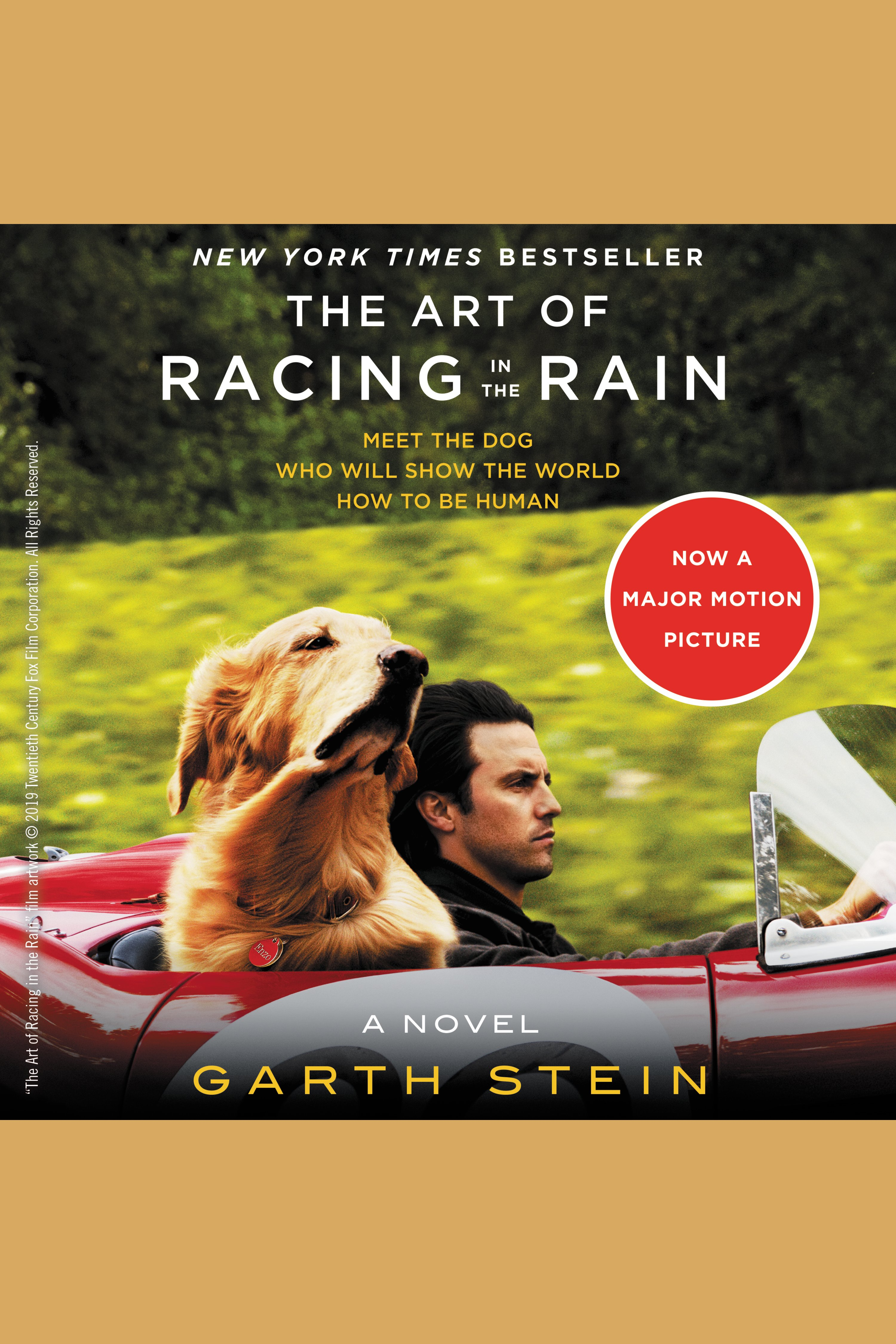 Art of Racing in the Rain, The