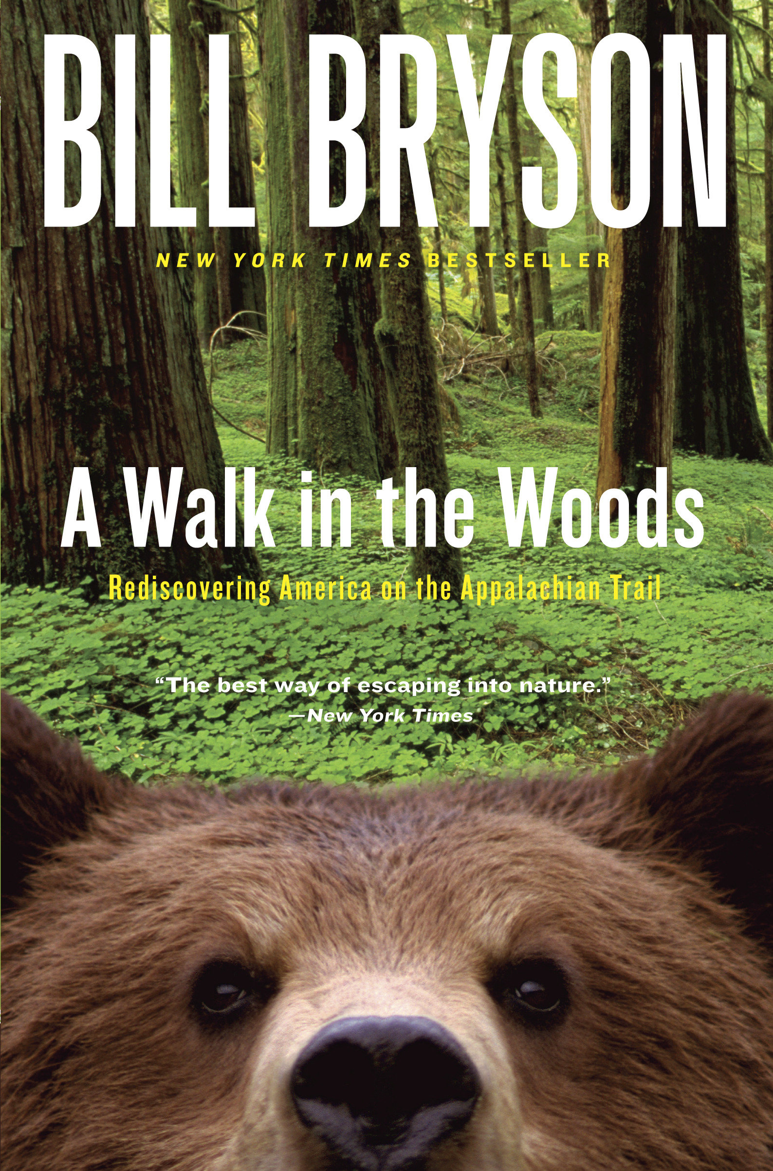 A Walk in the Woods Rediscovering America on the Appalachian Trail