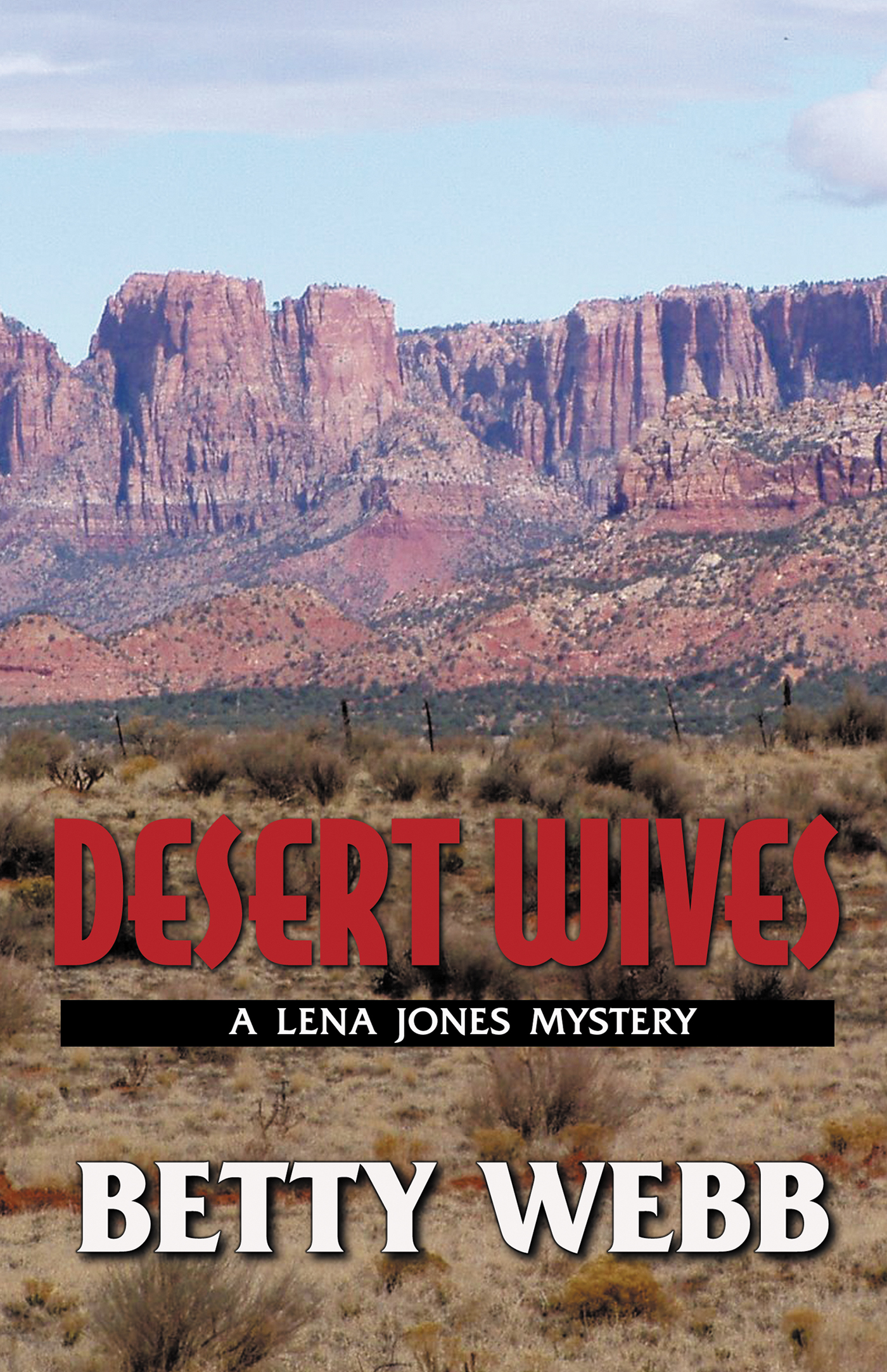 Desert wives : a Lena Jones mystery