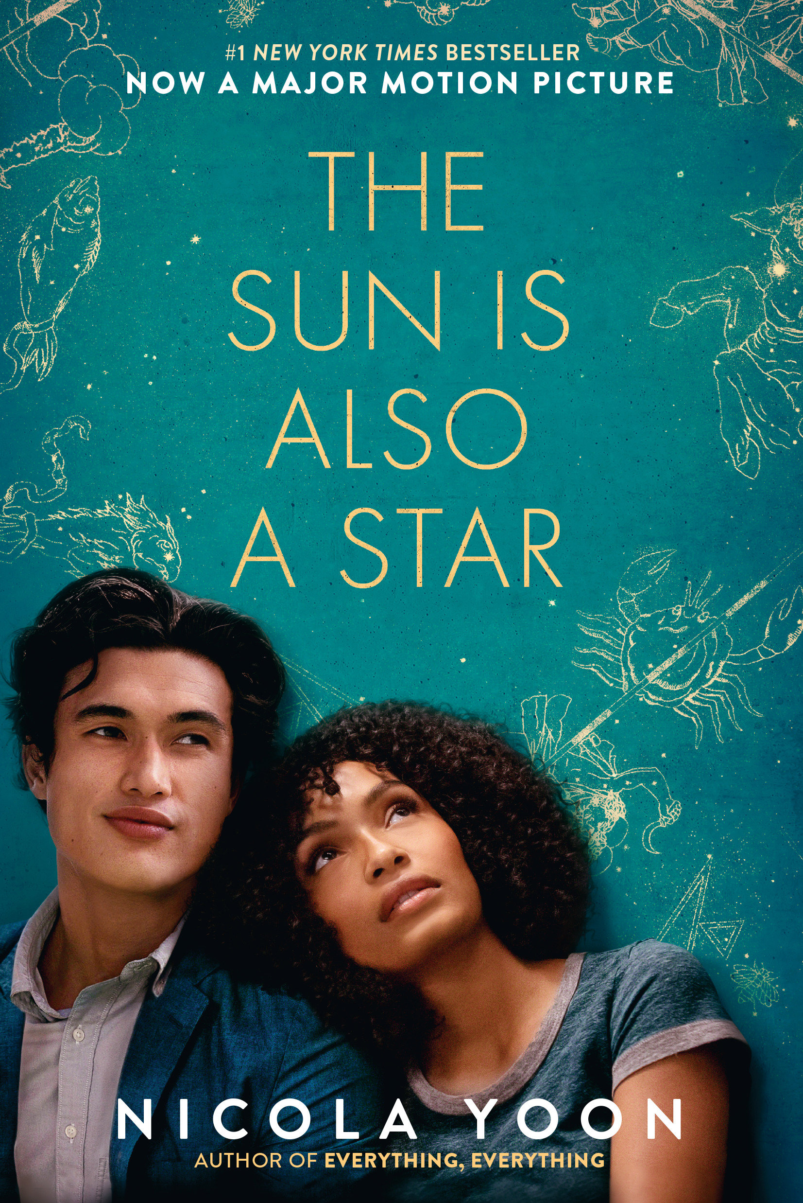 The sun is also a star [eBook]