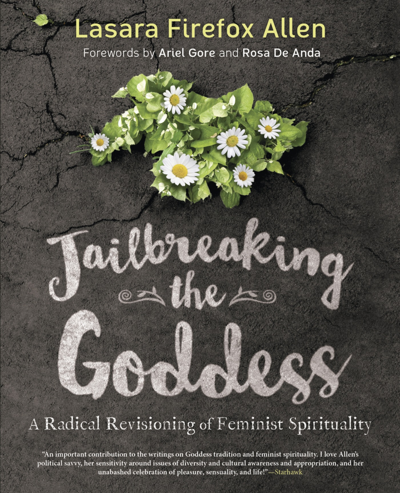 Cover image for Jailbreaking the Goddess [electronic resource] : A Radical Revisioning of Feminist Spirituality