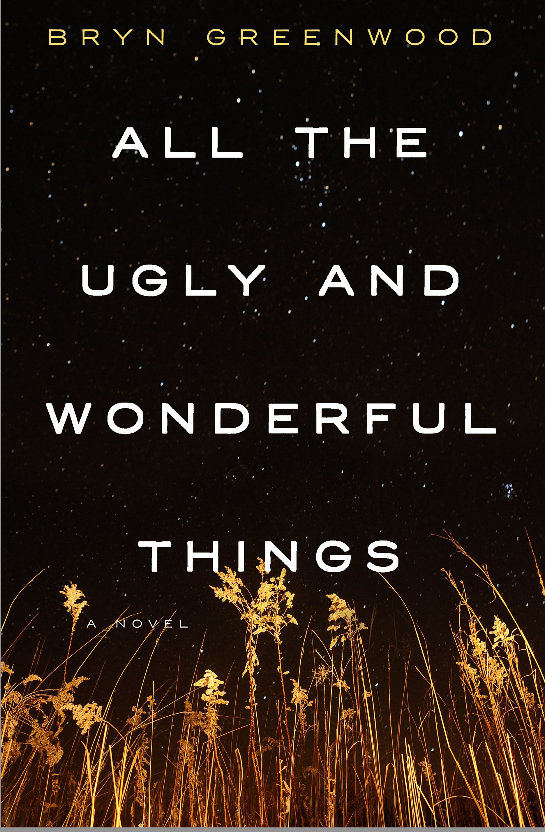All the Ugly and Wonderful Things A Novel