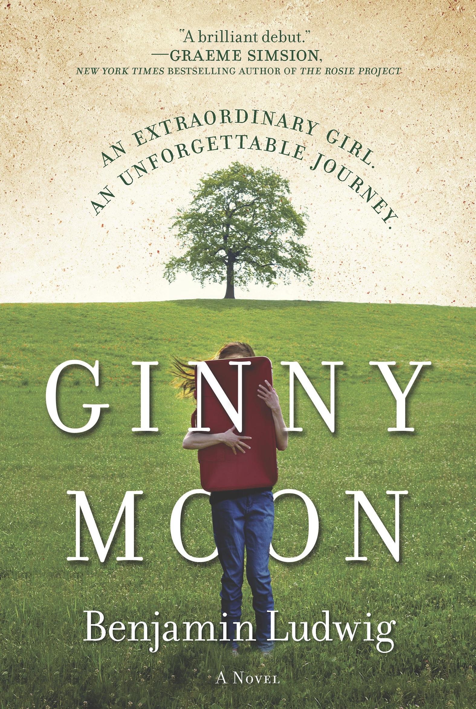 Ginny Moon a novel