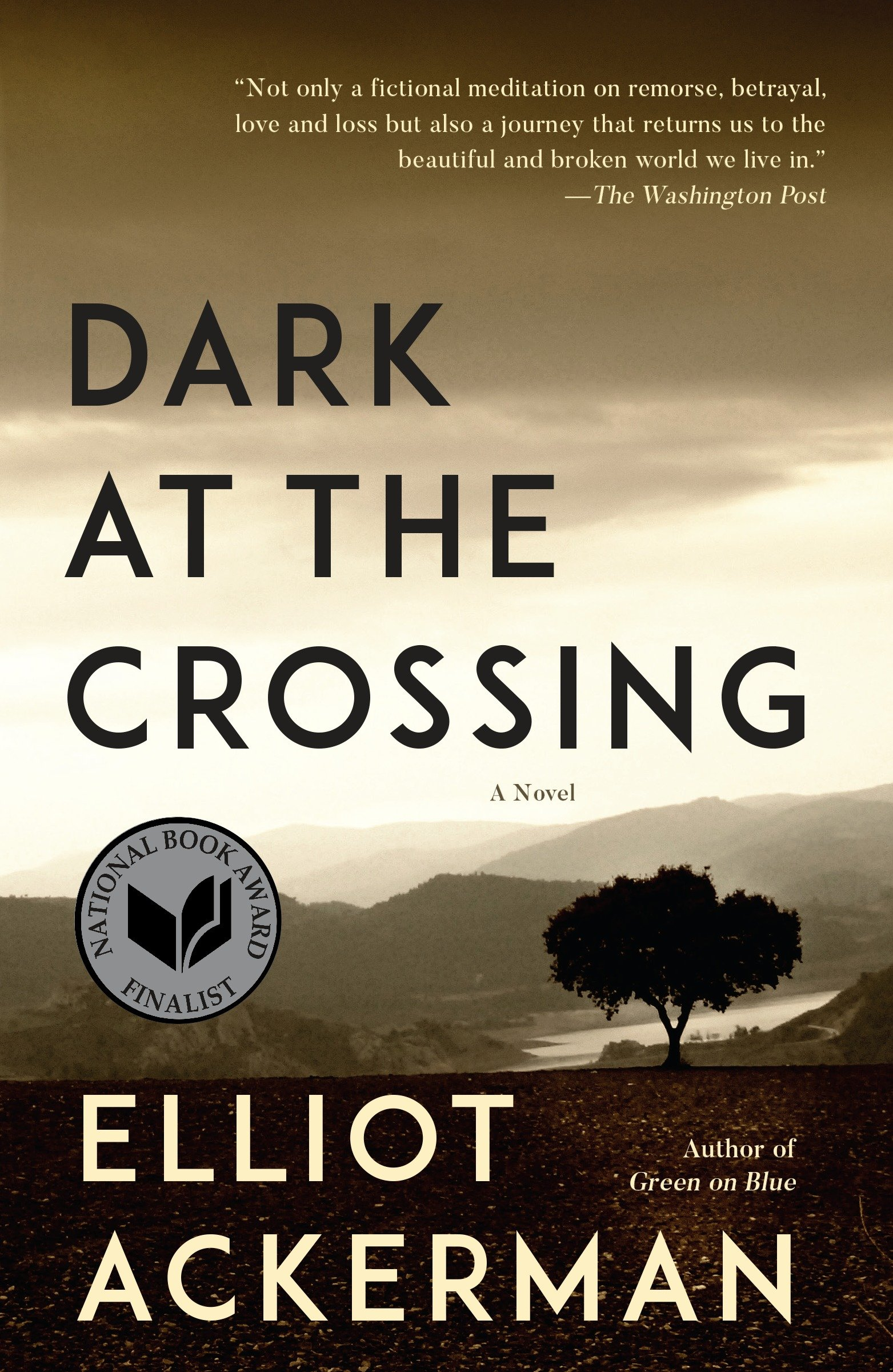 Dark at the Crossing A novel