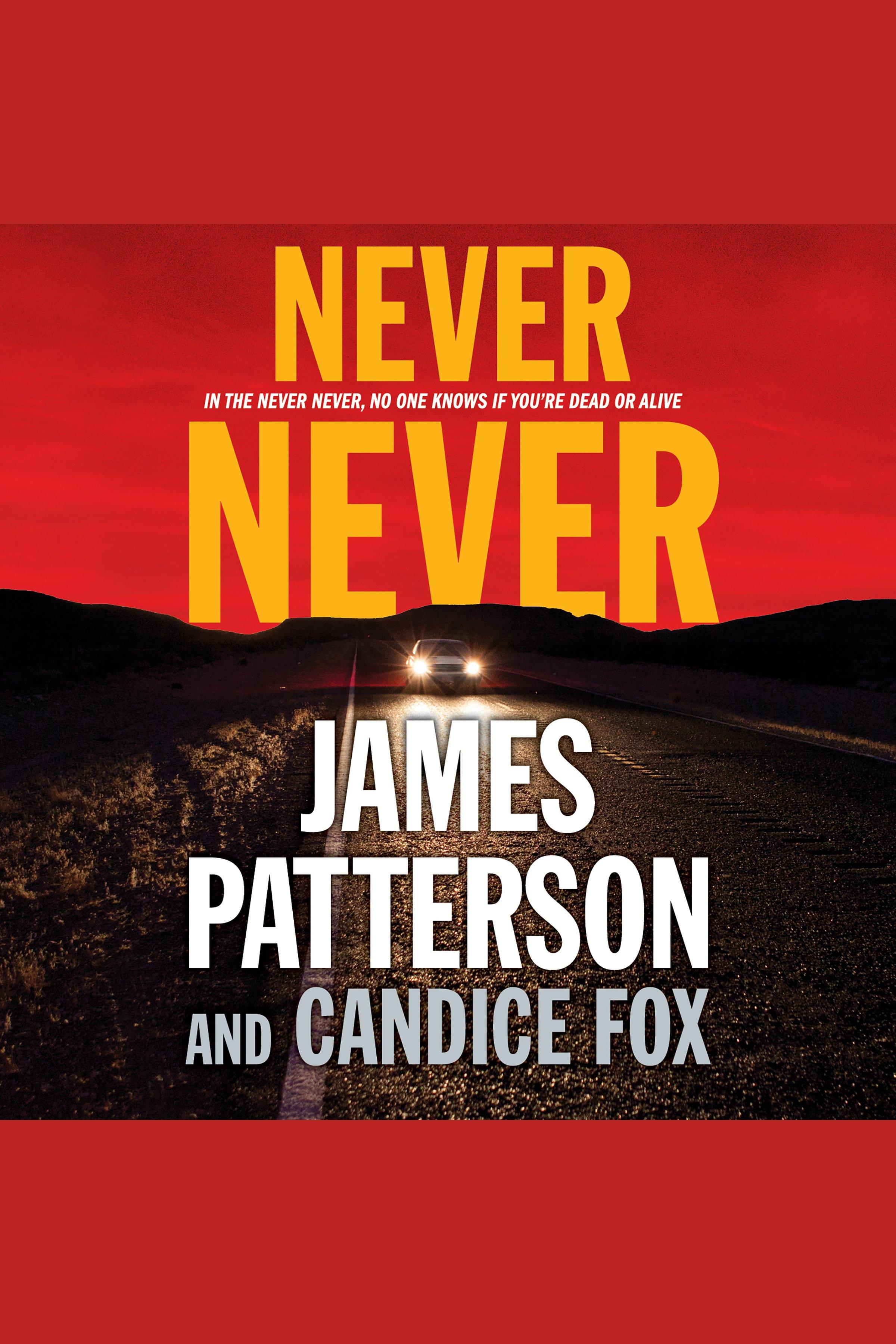 Never Never [AUDIO EBOOK]