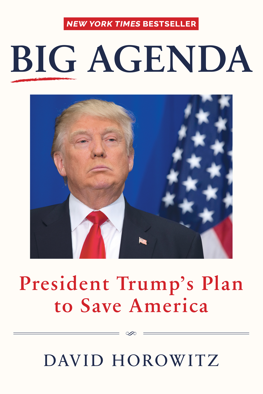 Big Agenda President Trump's Plan to Save America
