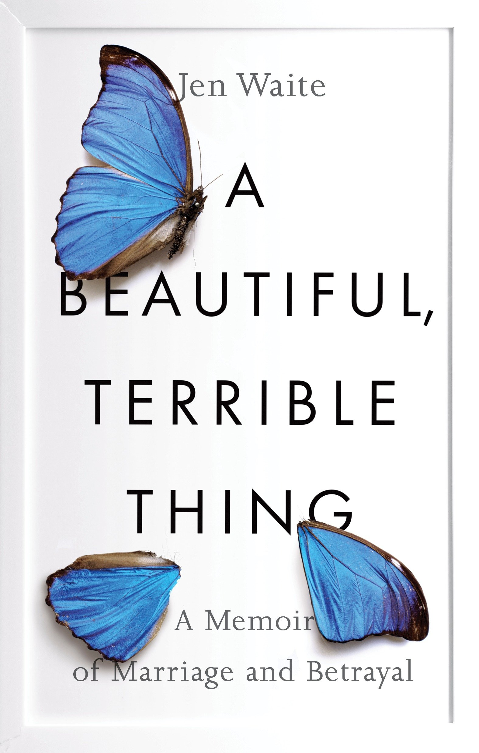 A Beautiful, Terrible Thing A Memoir of Marriage and Betrayal