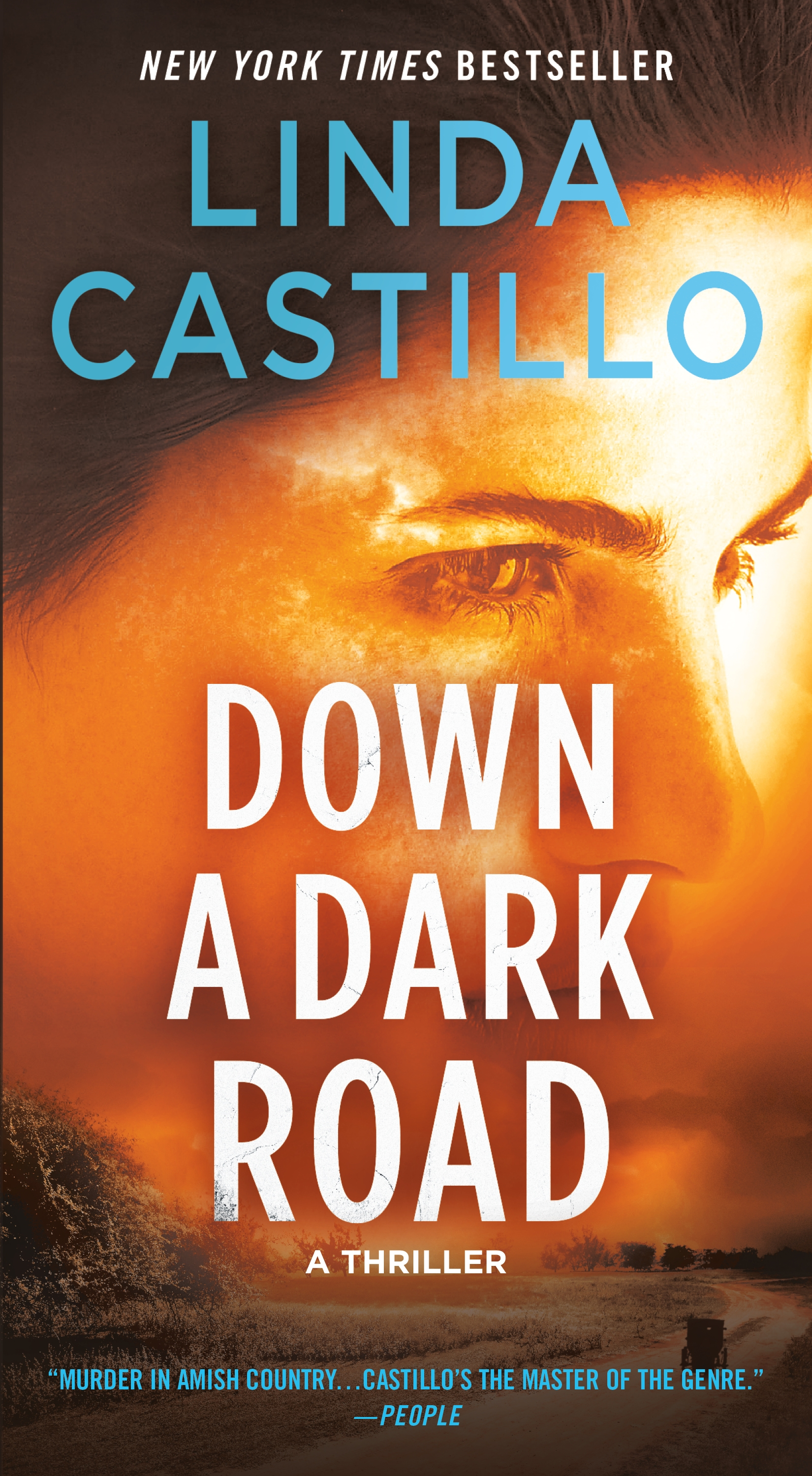 Down a Dark Road A Kate Burkholder Novel