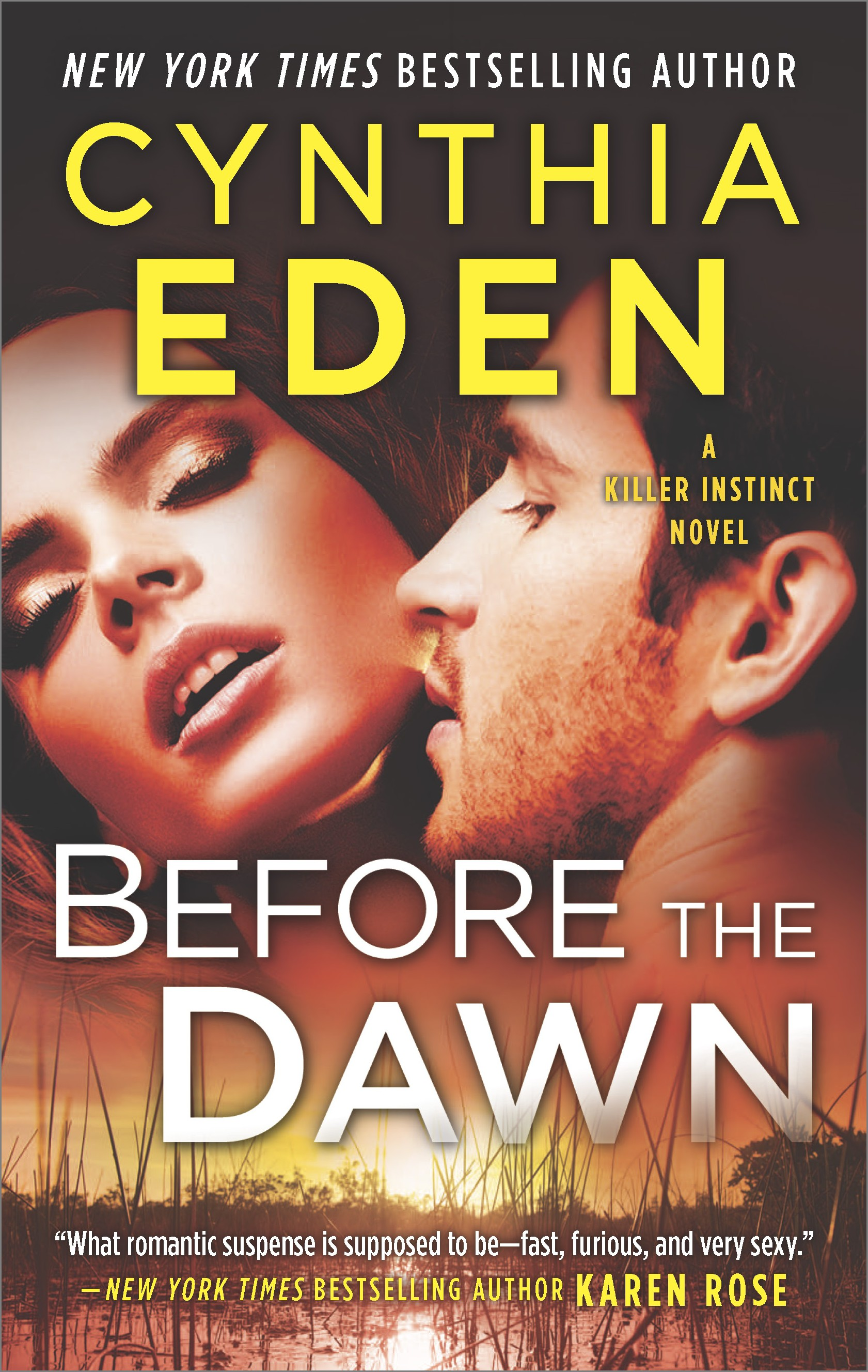 Before the Dawn A Novel of Romantic Suspense