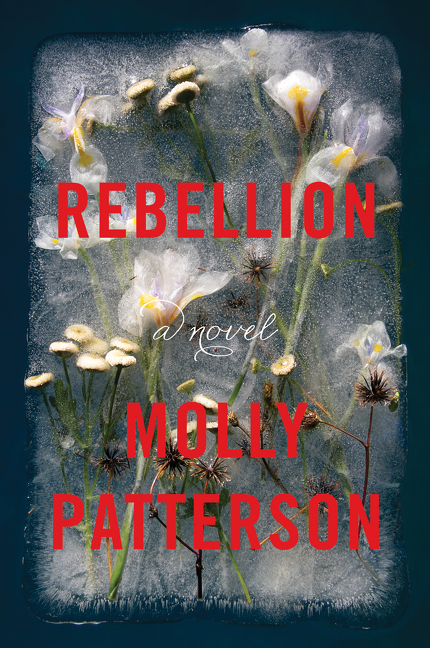 Rebellion : a novel