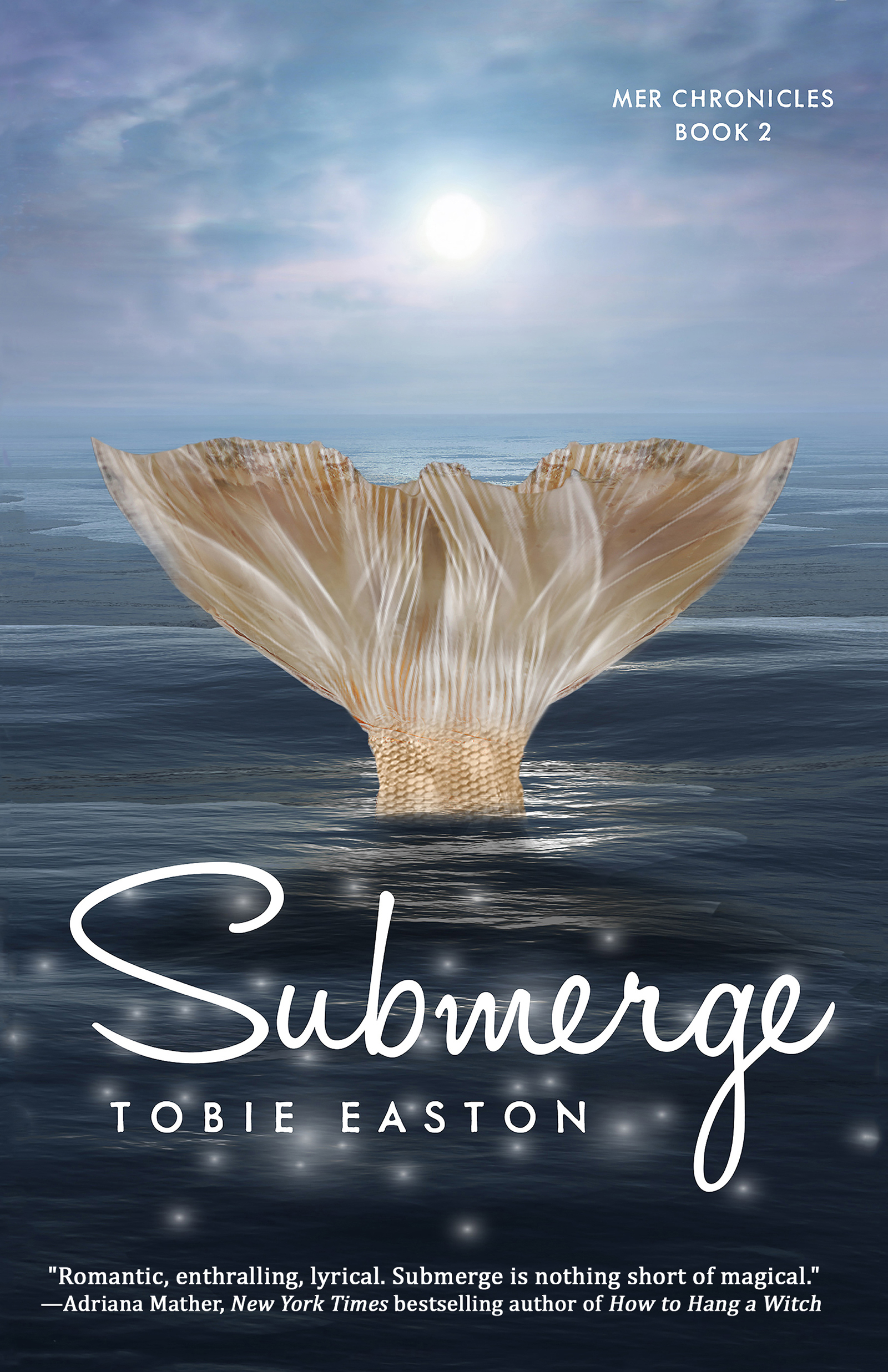 Submerge [electronic resource]