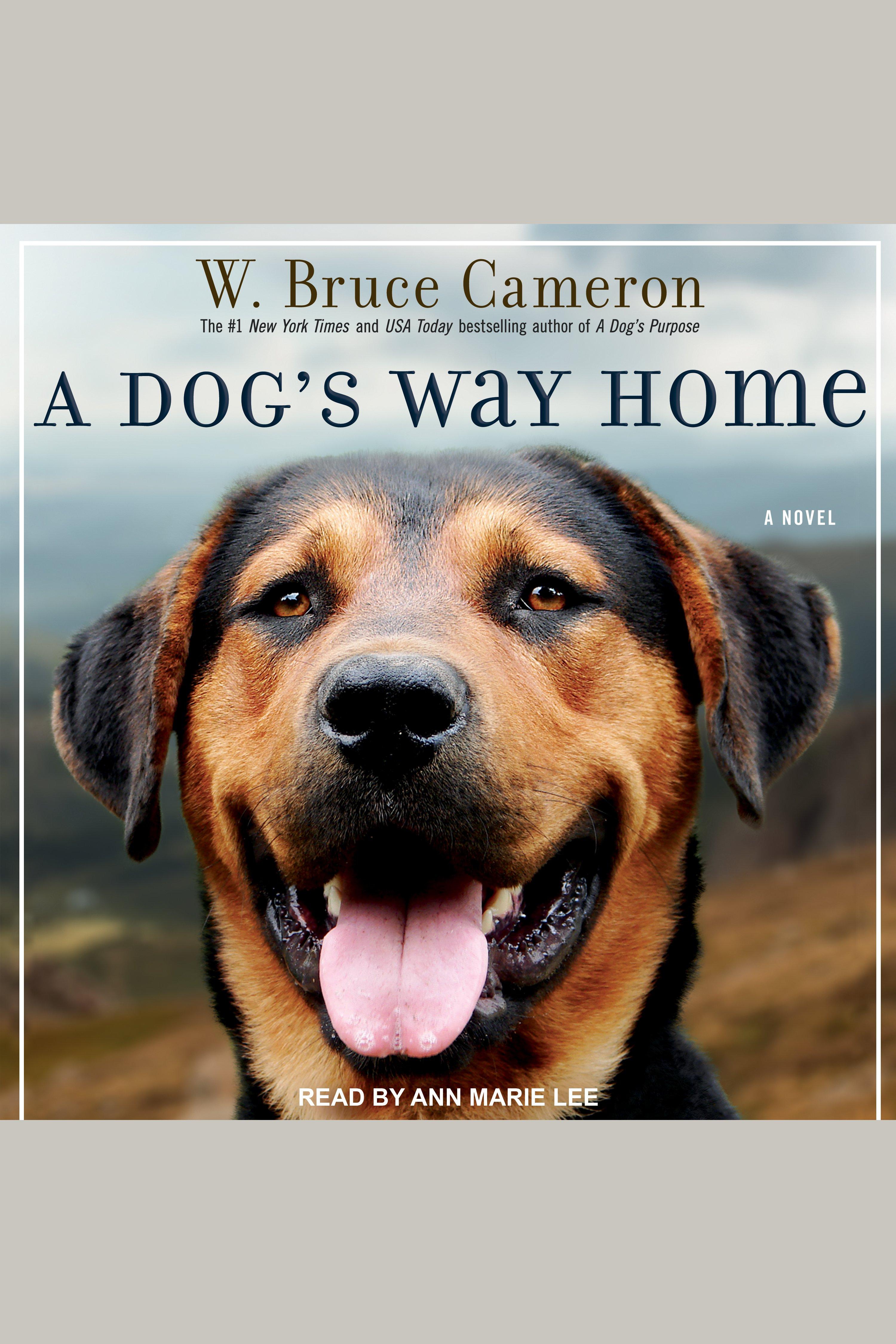 Dog's Way Home, A
