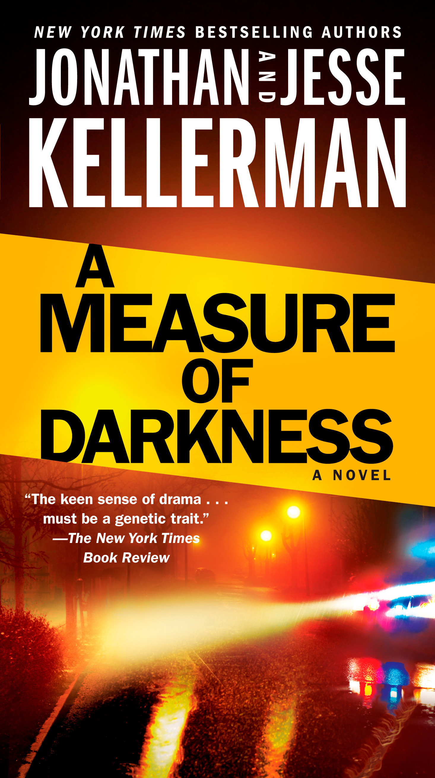 A Measure of Darkness A Novel