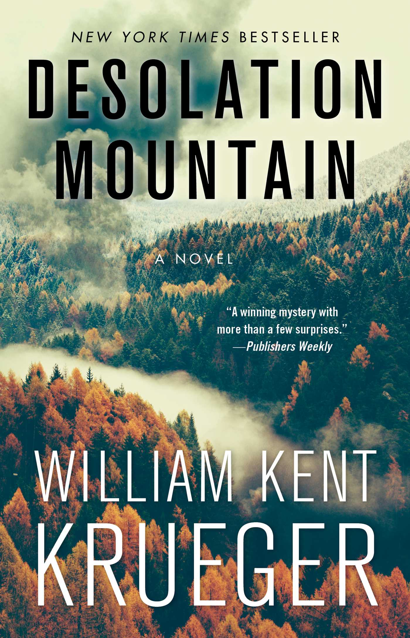Cover image for Desolation Mountain [electronic resource] : A Novel