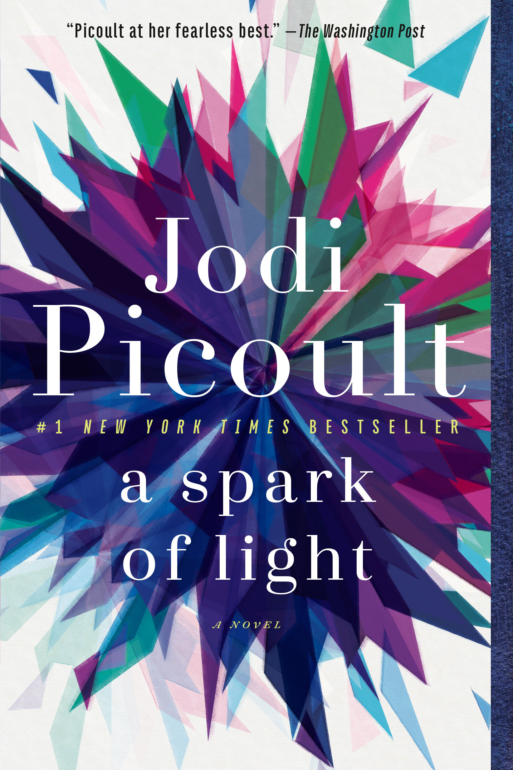 A Spark of Light A Novel
