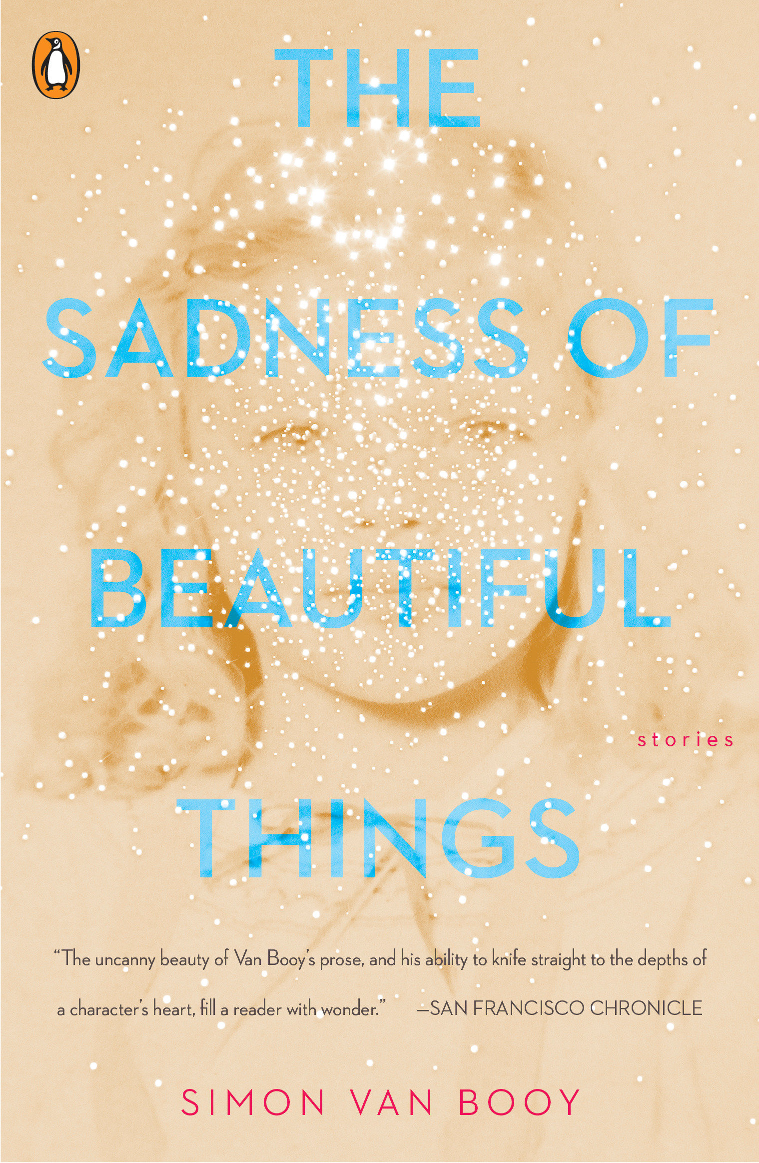 The sadness of beautiful things : stories