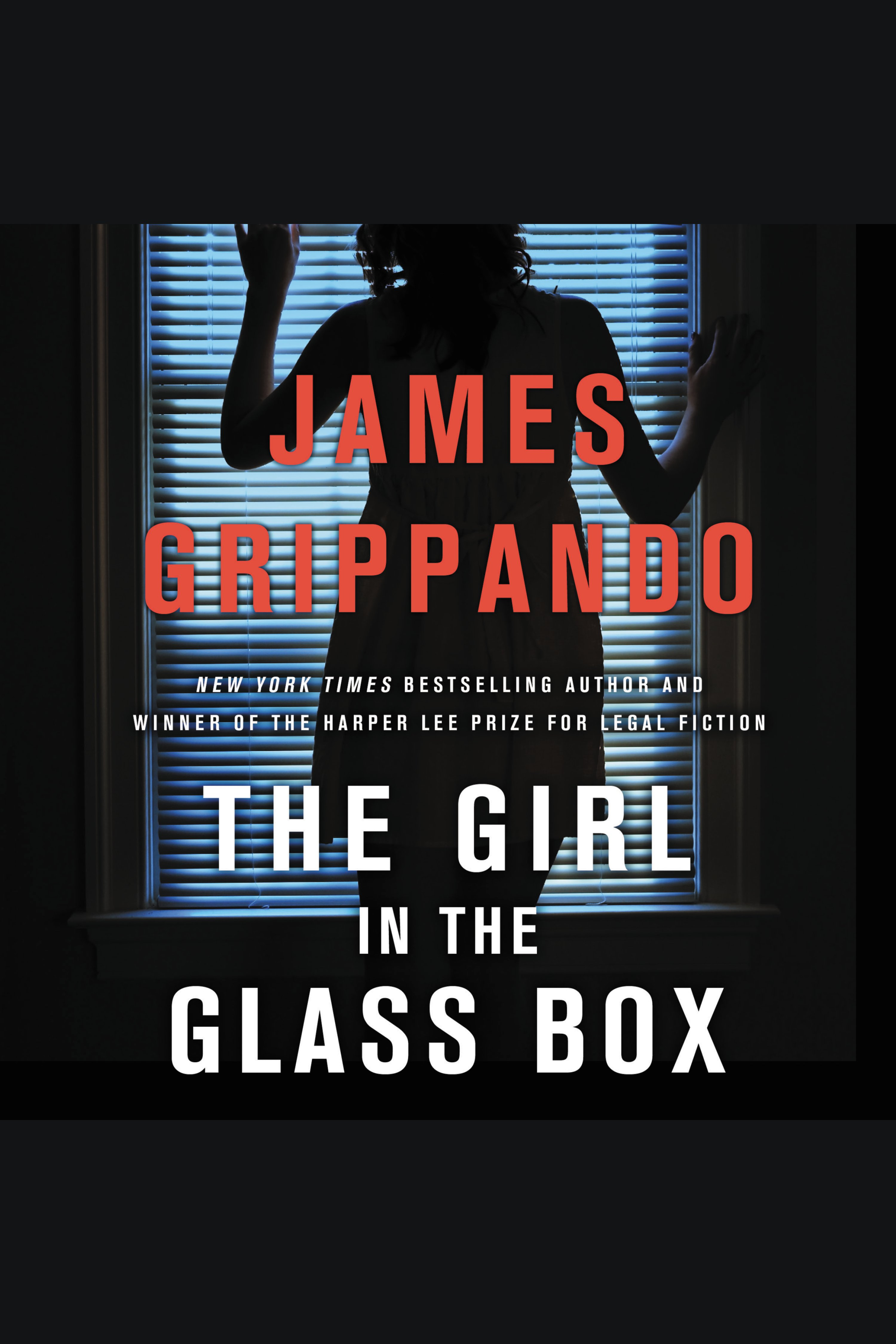 Girl in the Glass Box, The A Jack Swyteck Novel