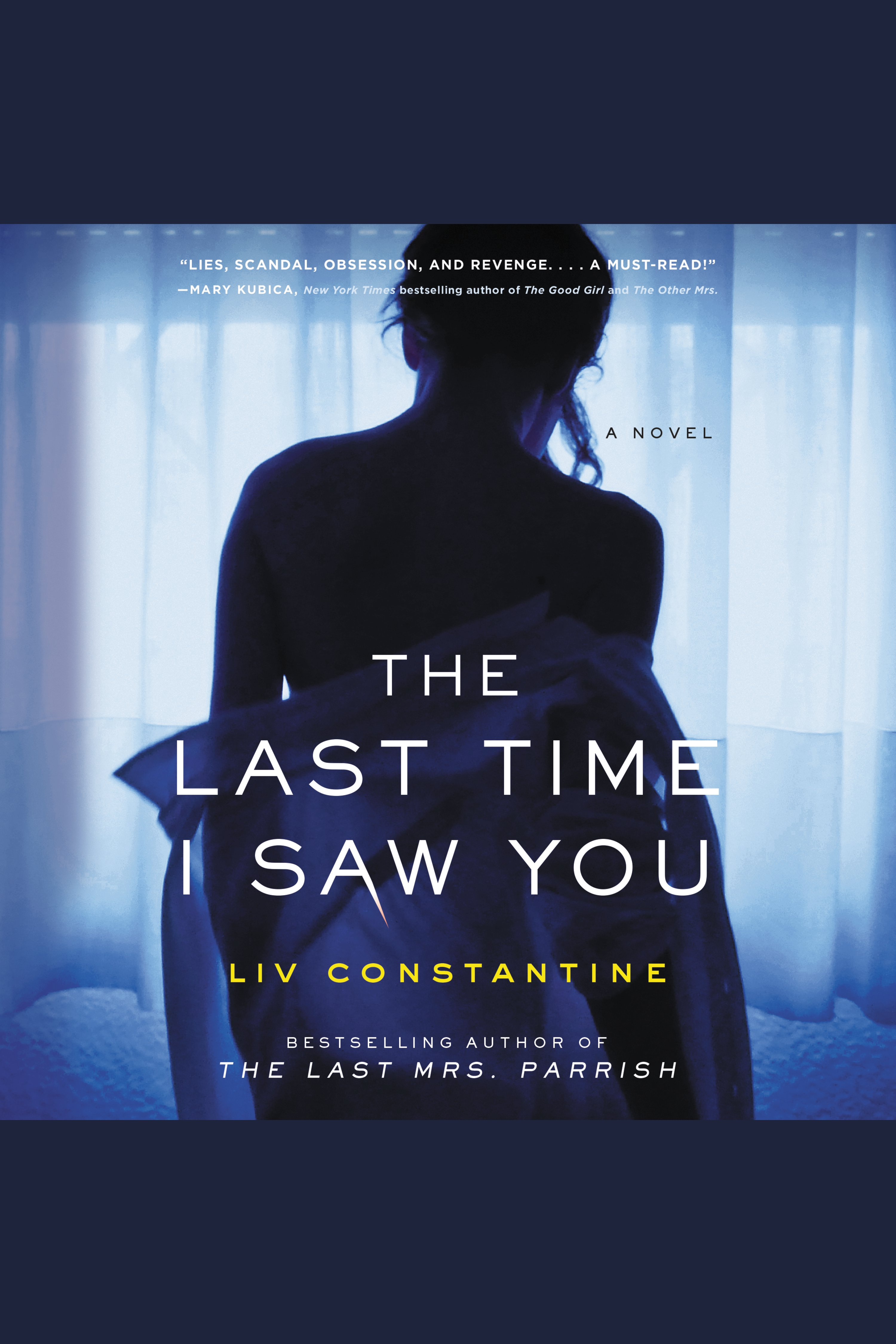 Last Time I Saw You, The A Novel