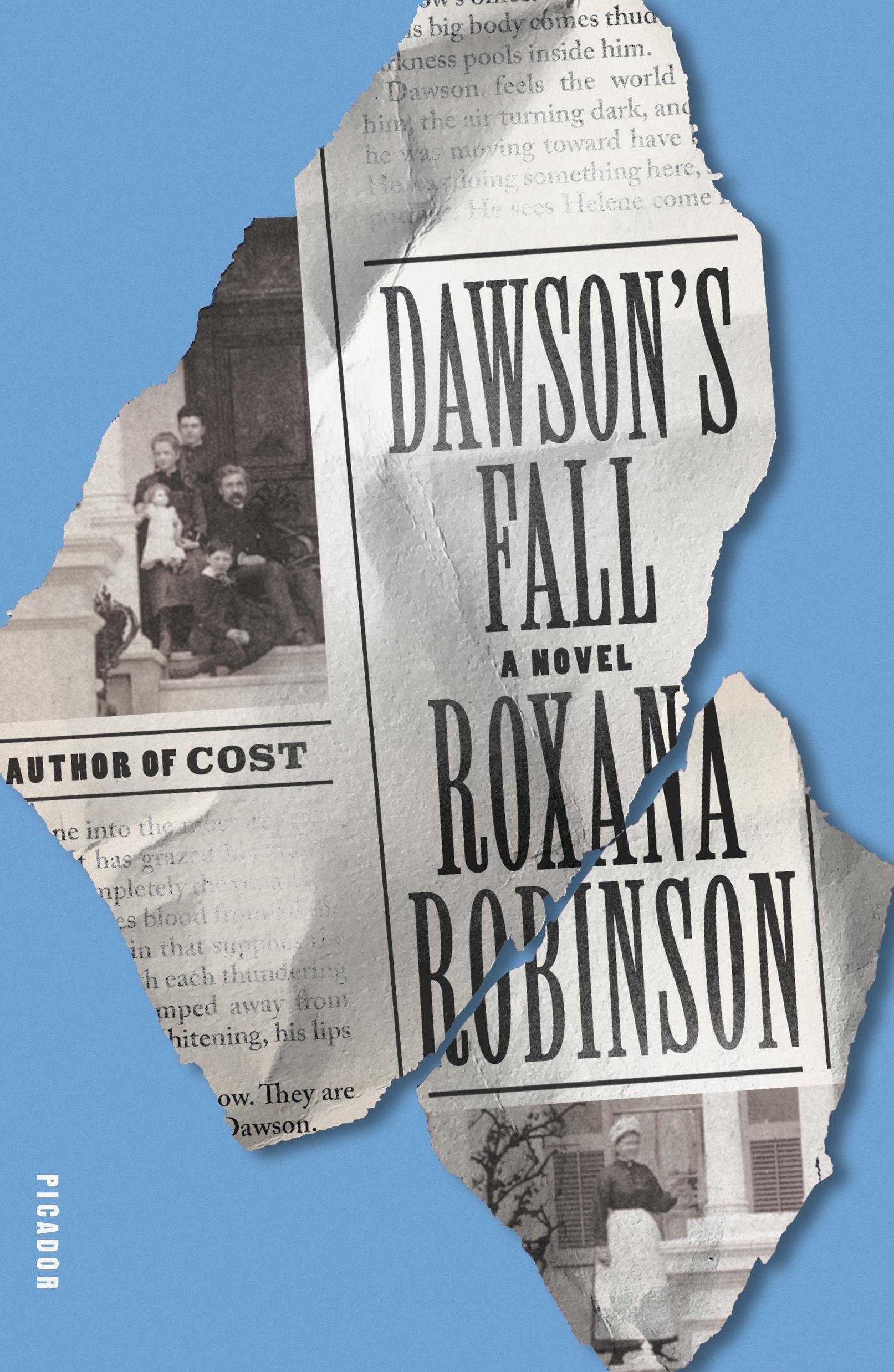 Dawson's Fall A Novel