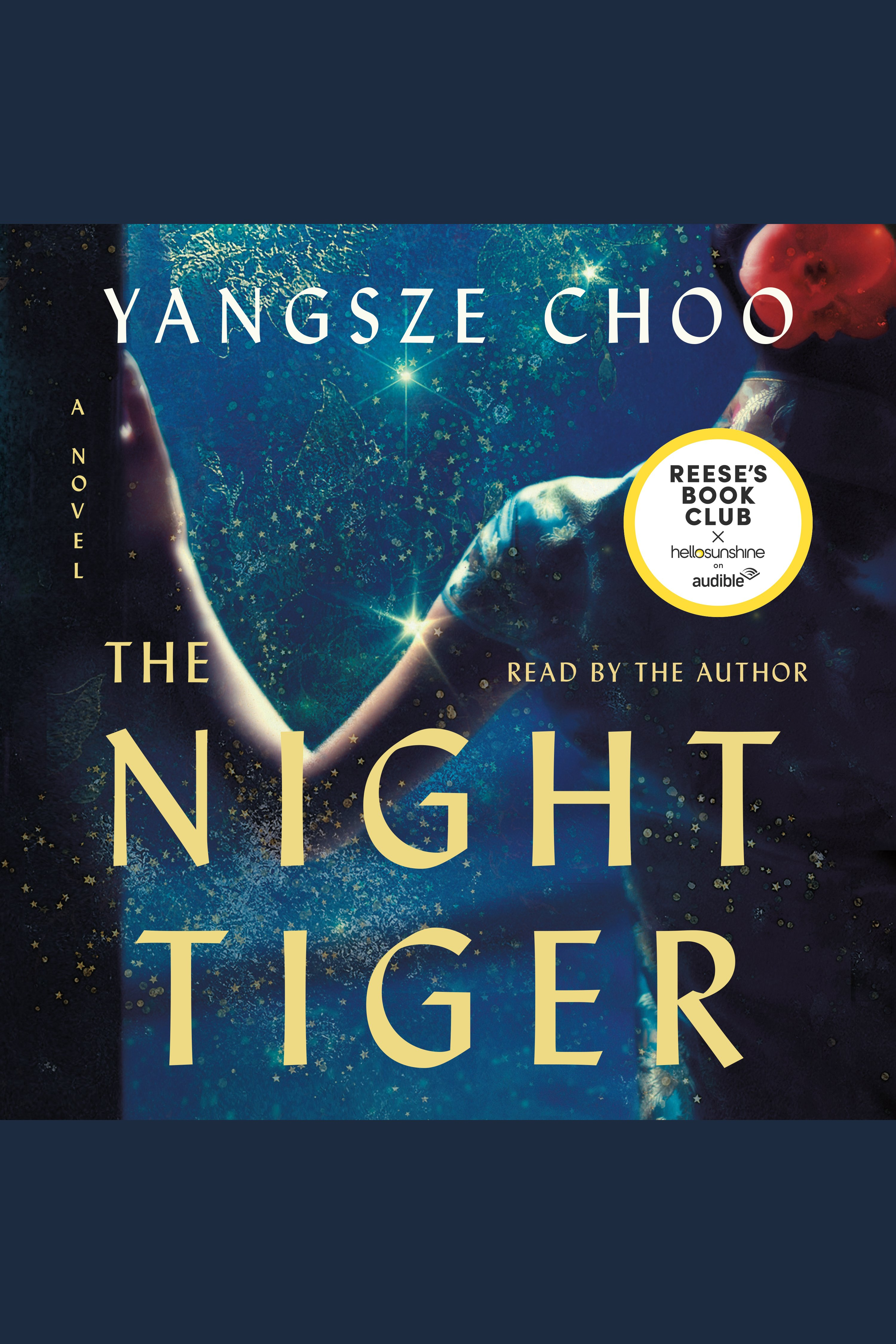 The night tiger [AudioEbook]
