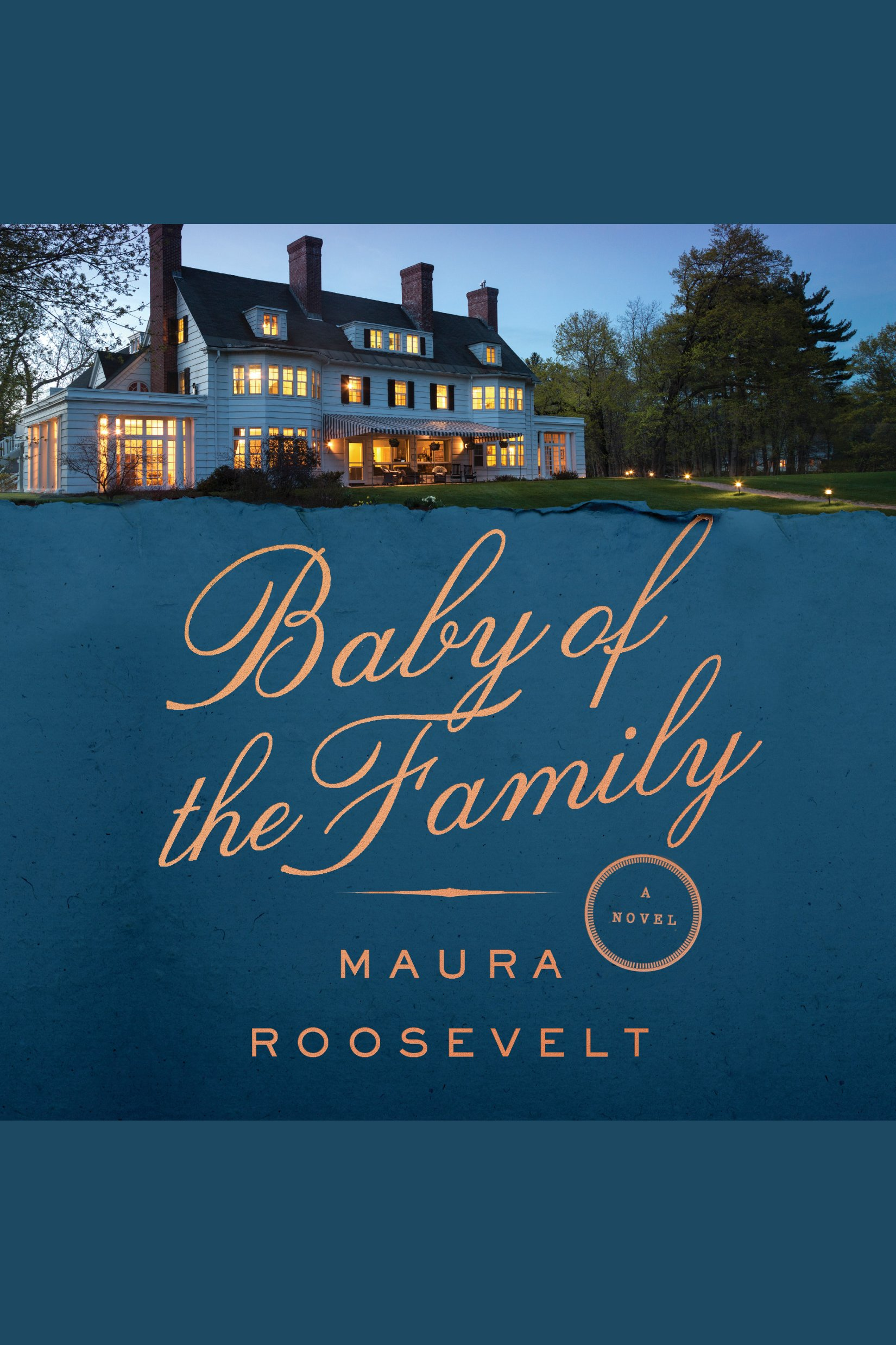 Baby of the Family A Novel