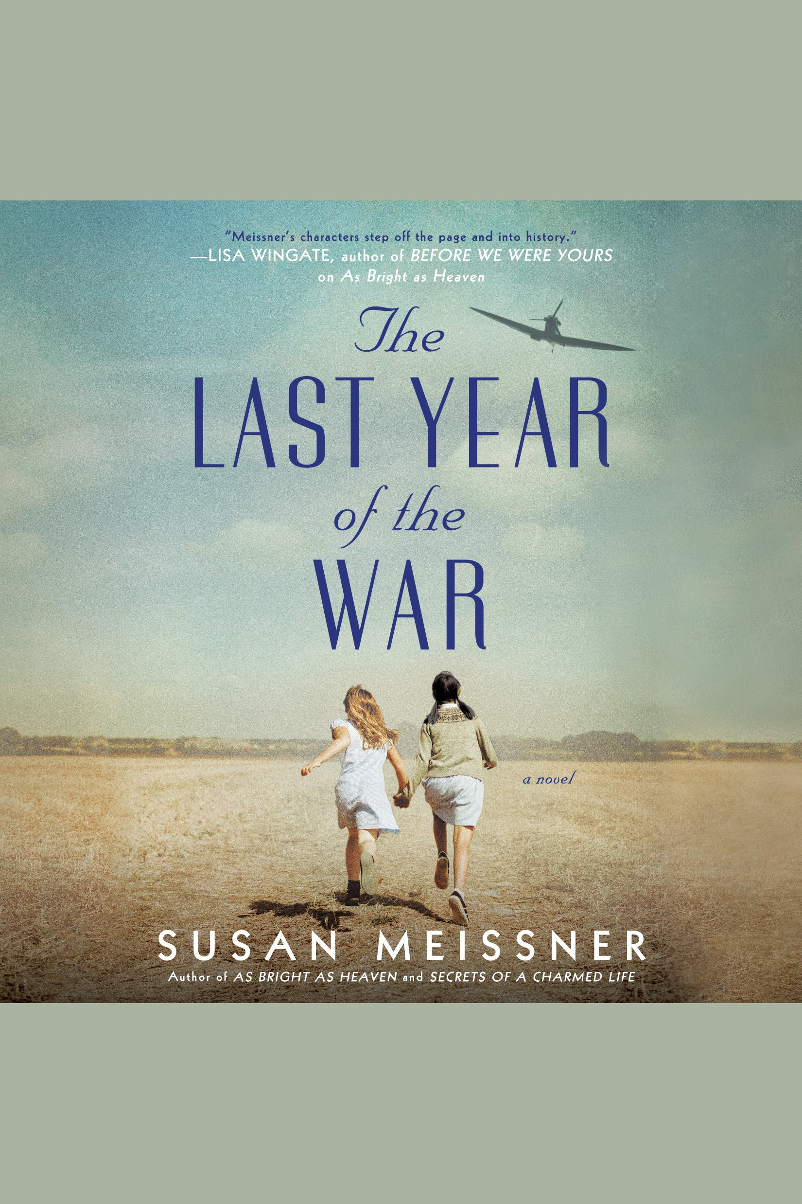 Last Year of the War, The A Novel