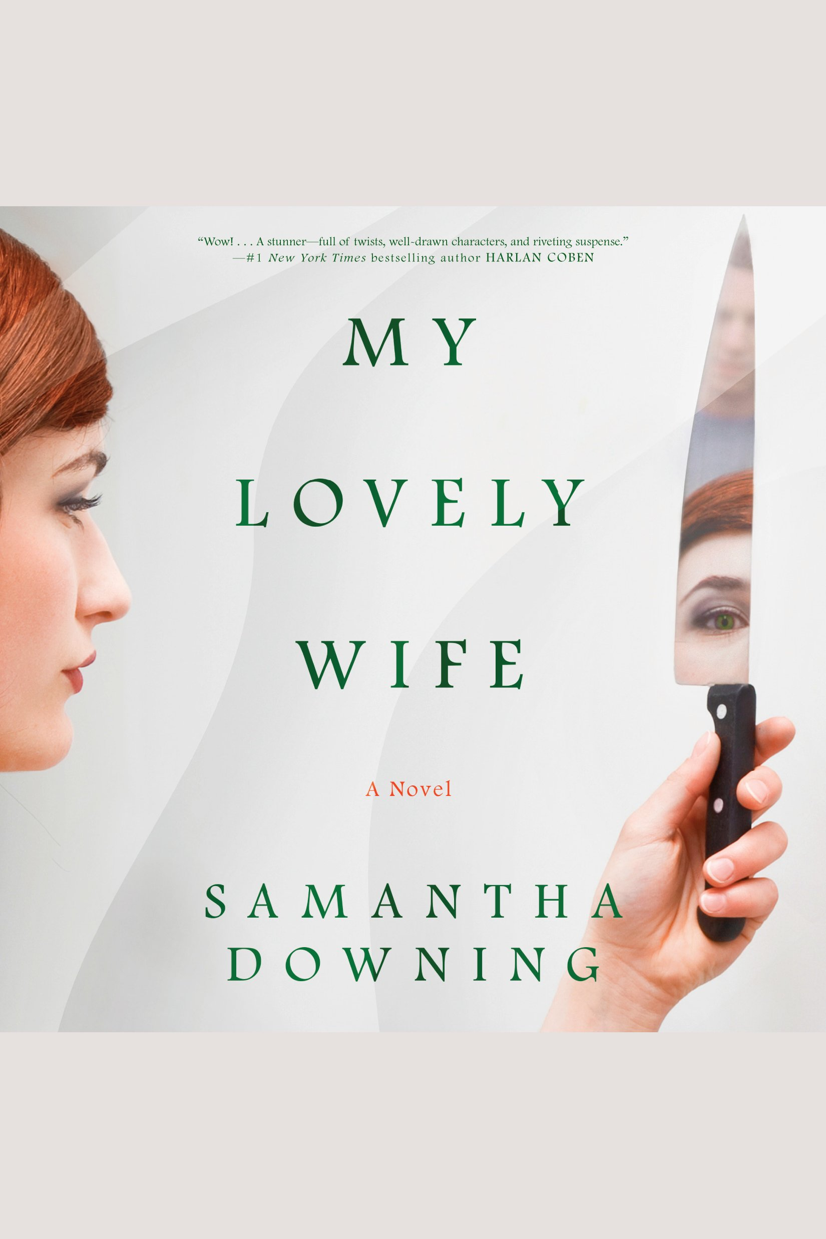 My Lovely Wife A Novel