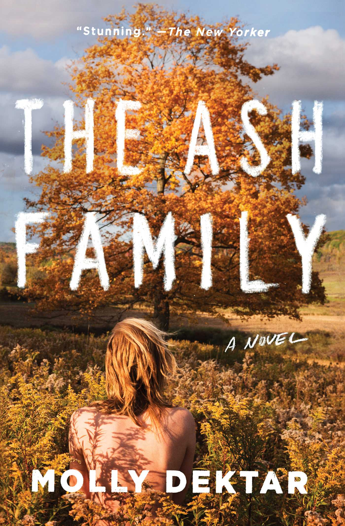 The Ash Family A Novel