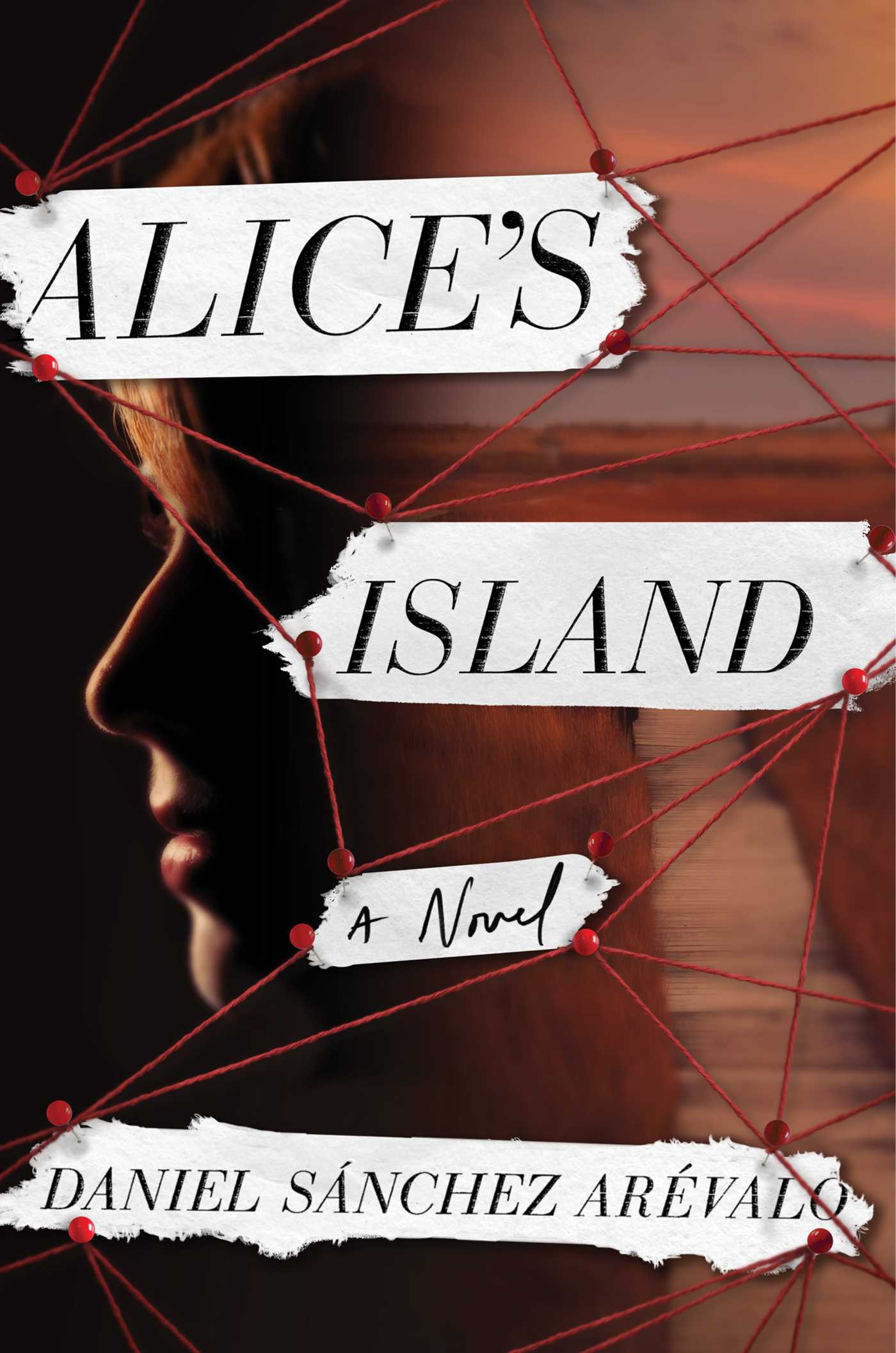 Alice's Island A Novel