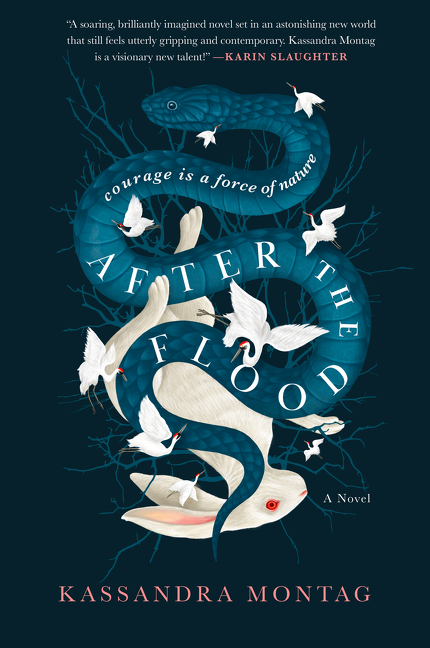 After the Flood [electronic resource] : A Novel