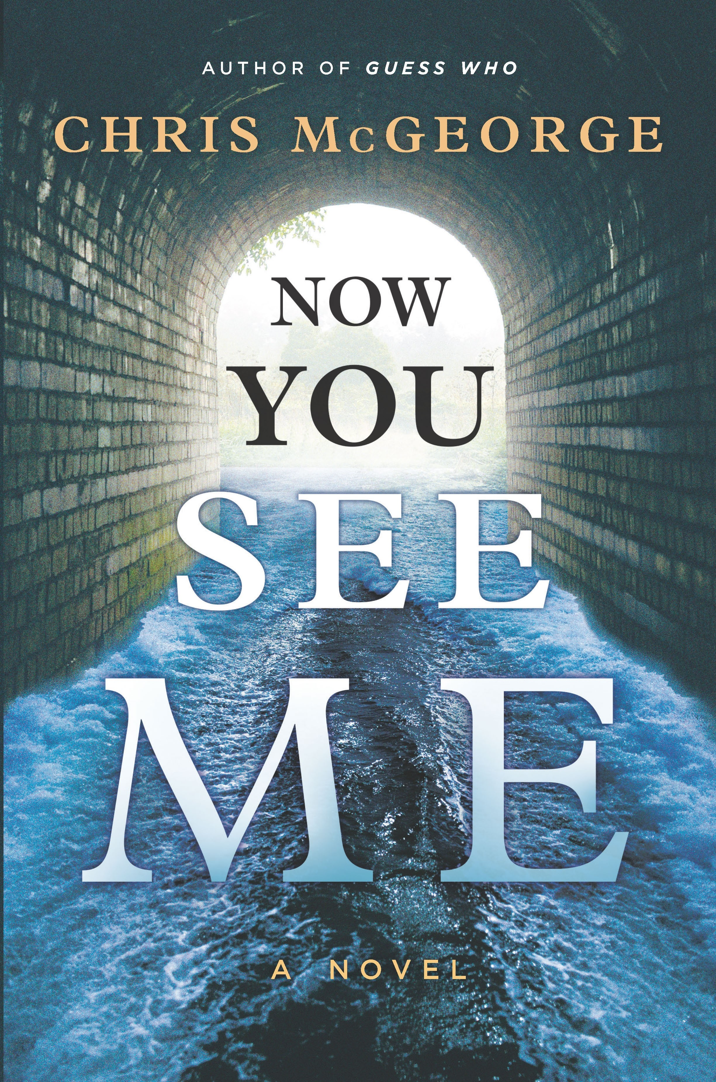 Now You See Me A Novel