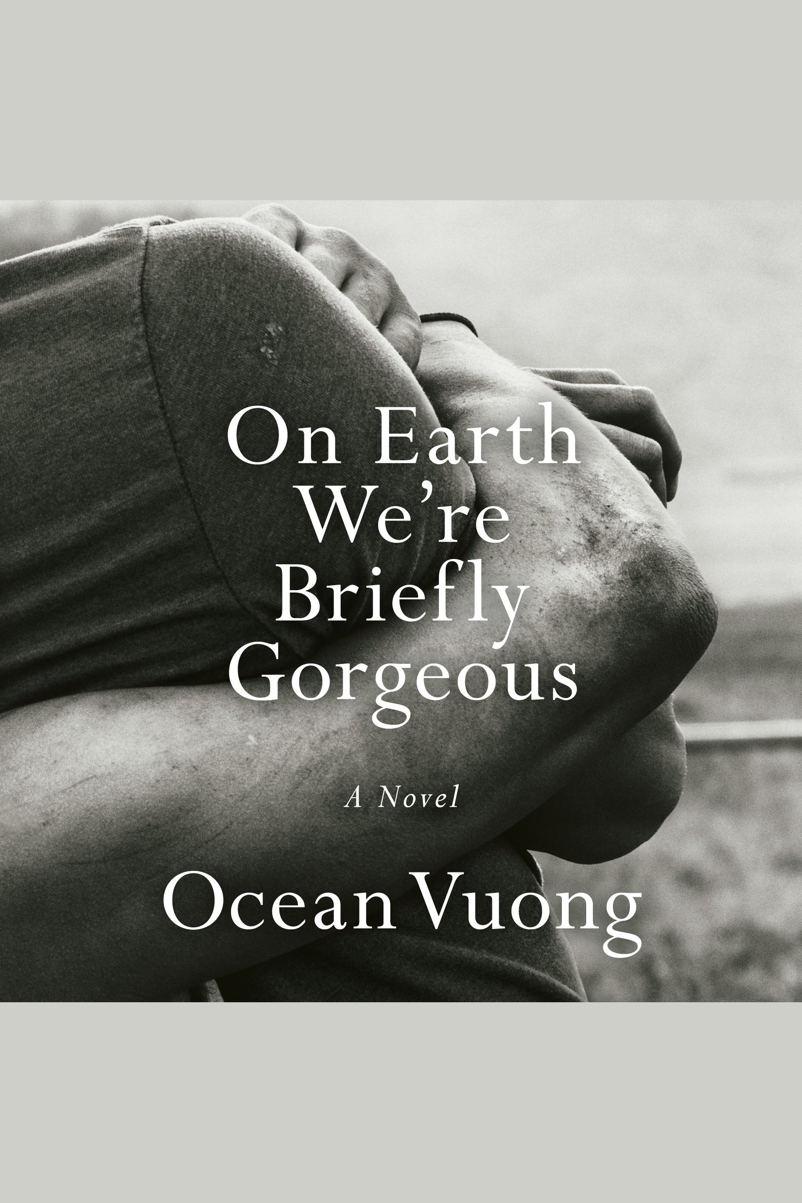On Earth We're Briefly Gorgeous A Novel