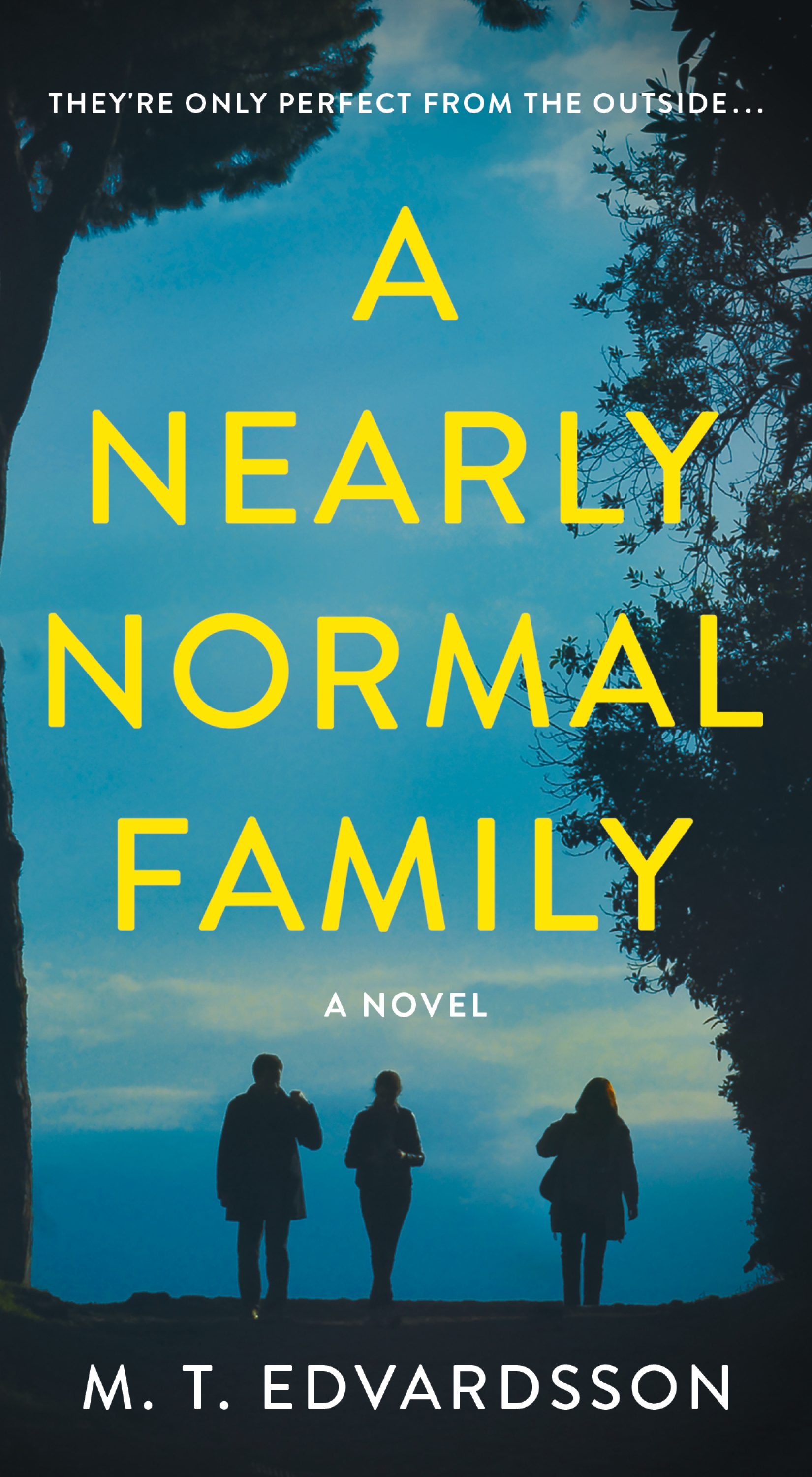 A Nearly Normal Family A Novel