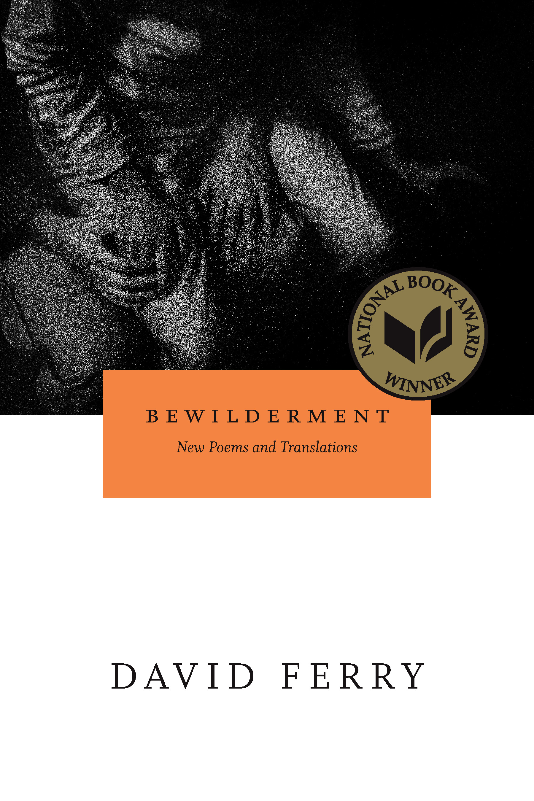 Bewilderment New Poems and Translations