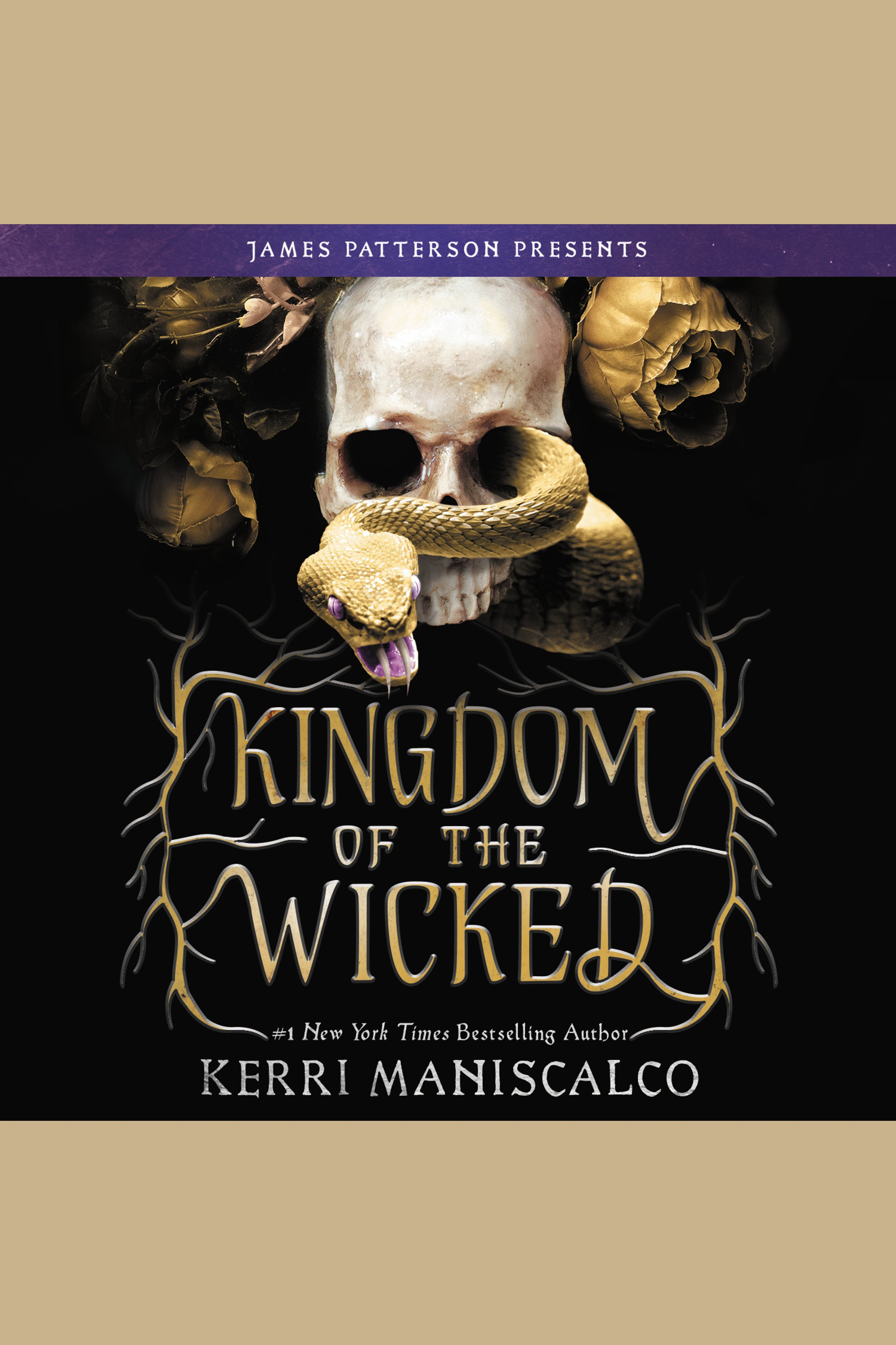 Cover Image of Kingdom of the Wicked