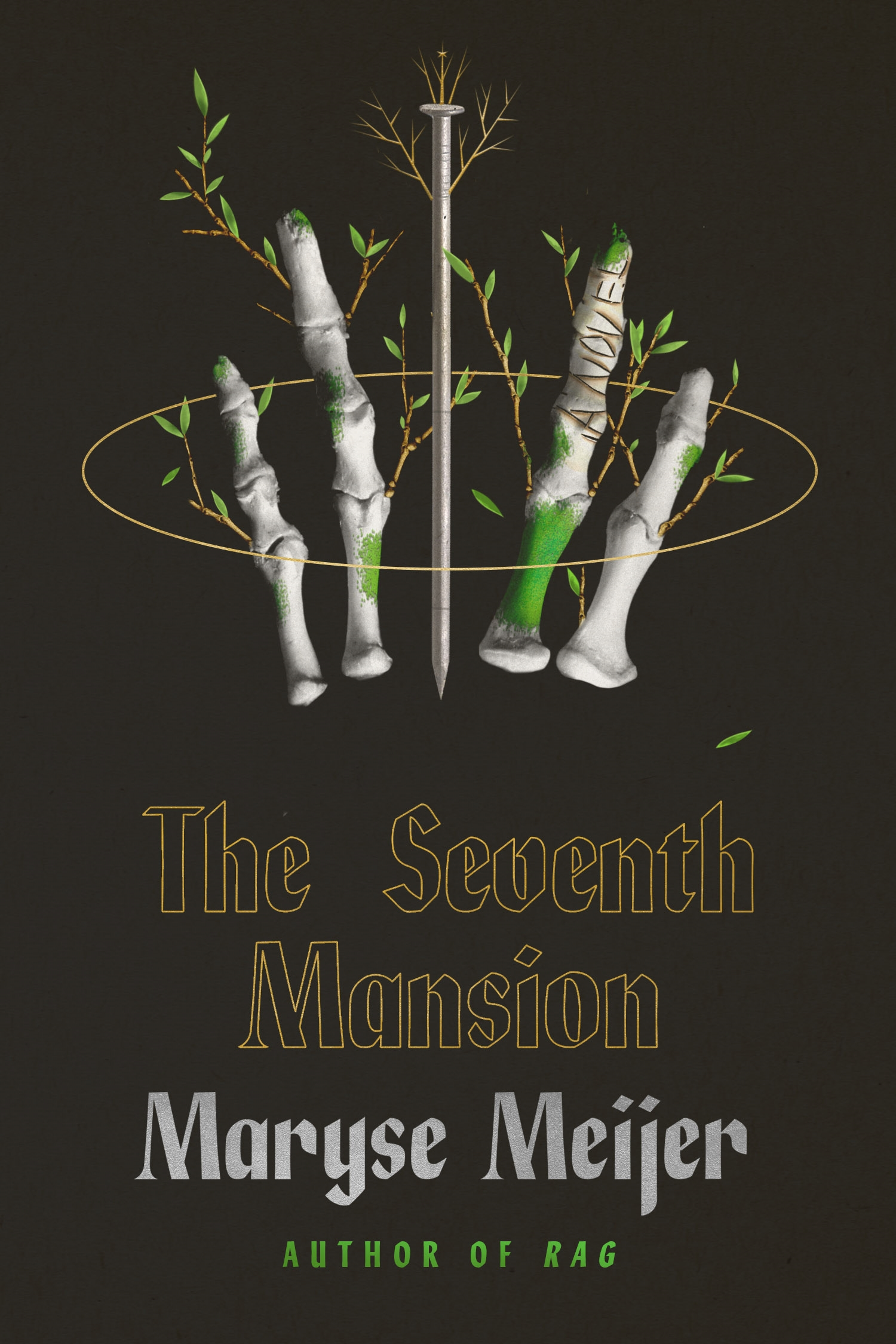 Cover Image of The Seventh Mansion