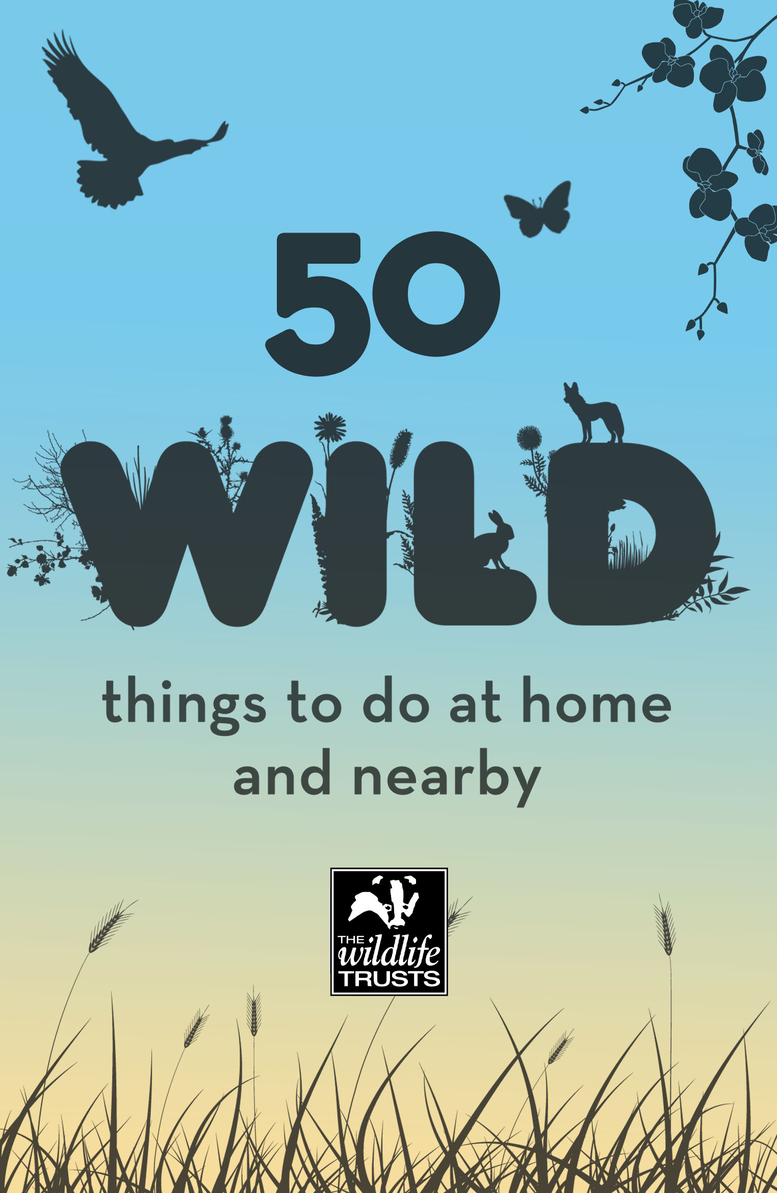 50 Wild Things to Do At Home and Nearby