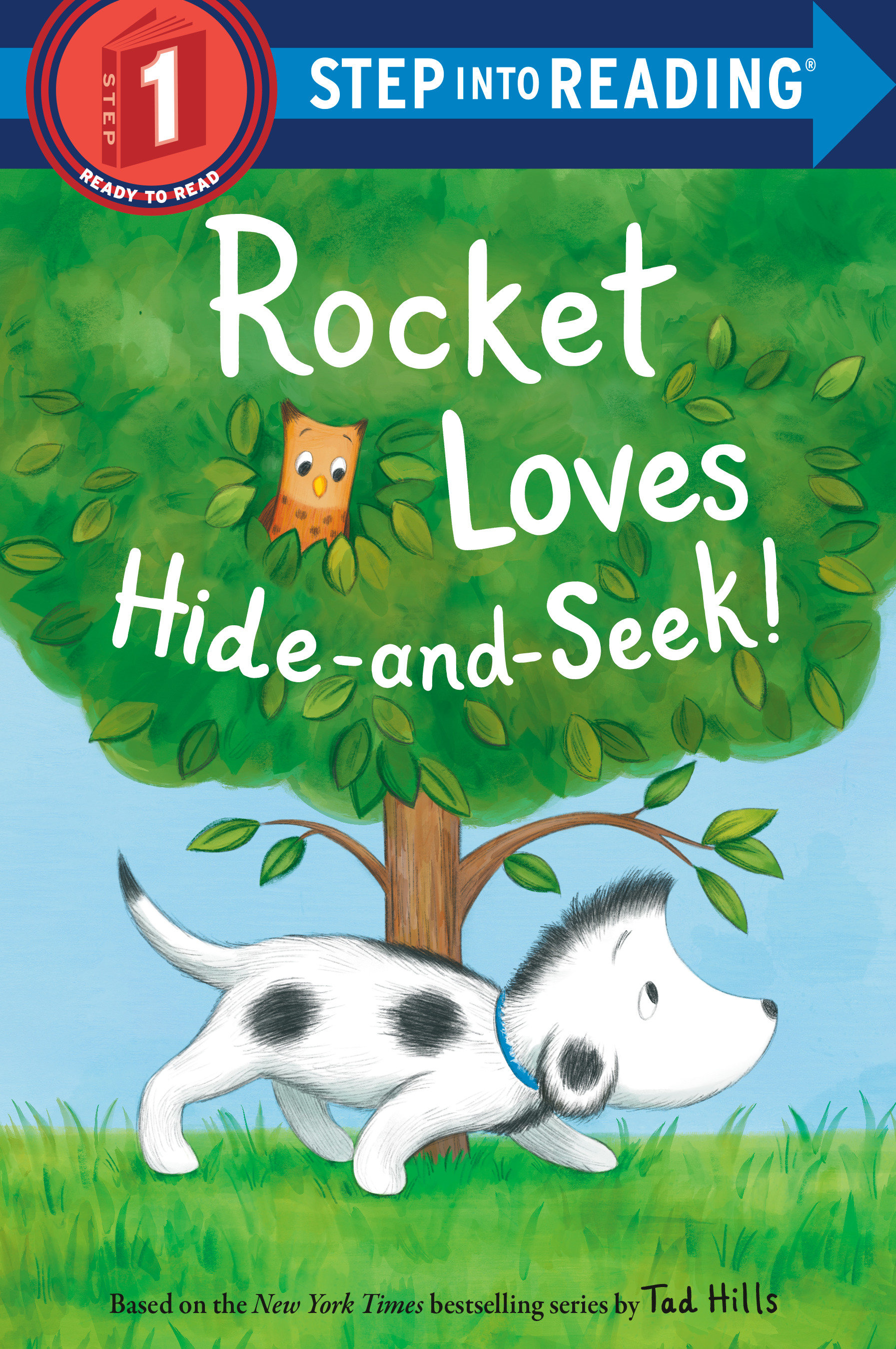 Cover Image of Rocket Loves Hide-and-Seek!