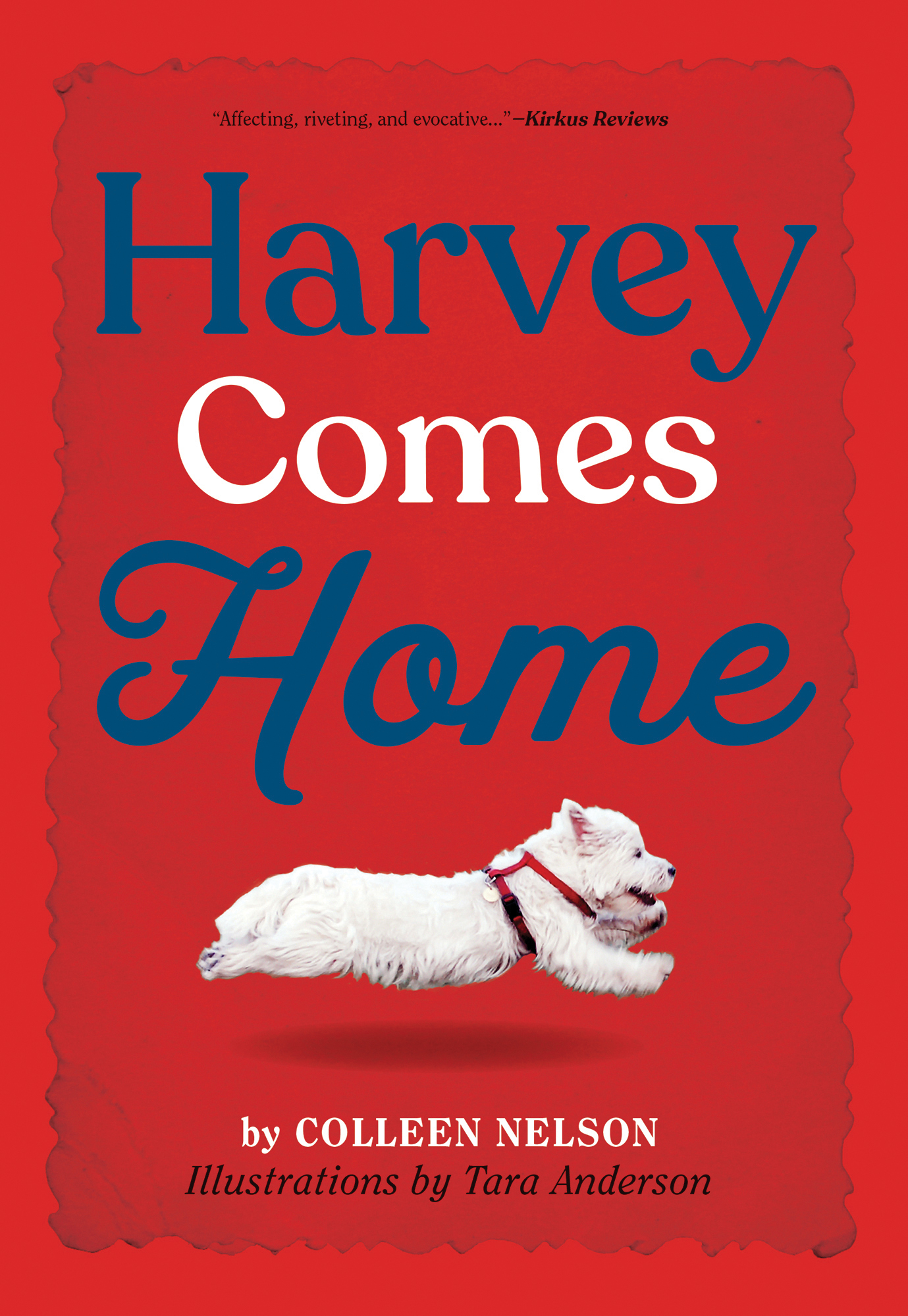 Cover Image of Harvey Comes Home