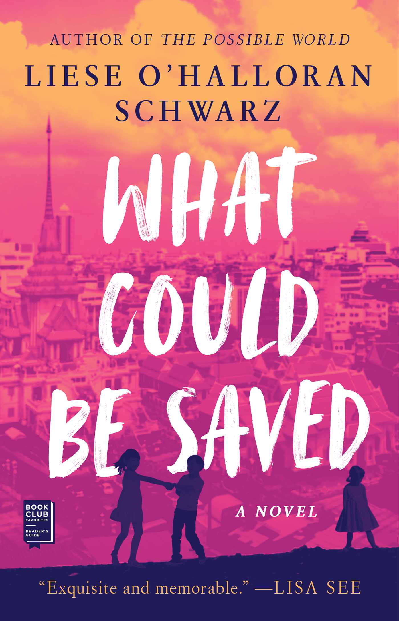 What Could Be Saved A Novel