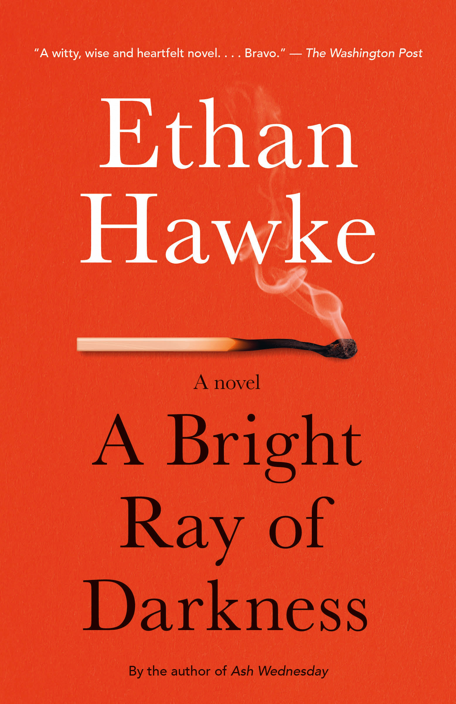 A Bright Ray of Darkness A novel