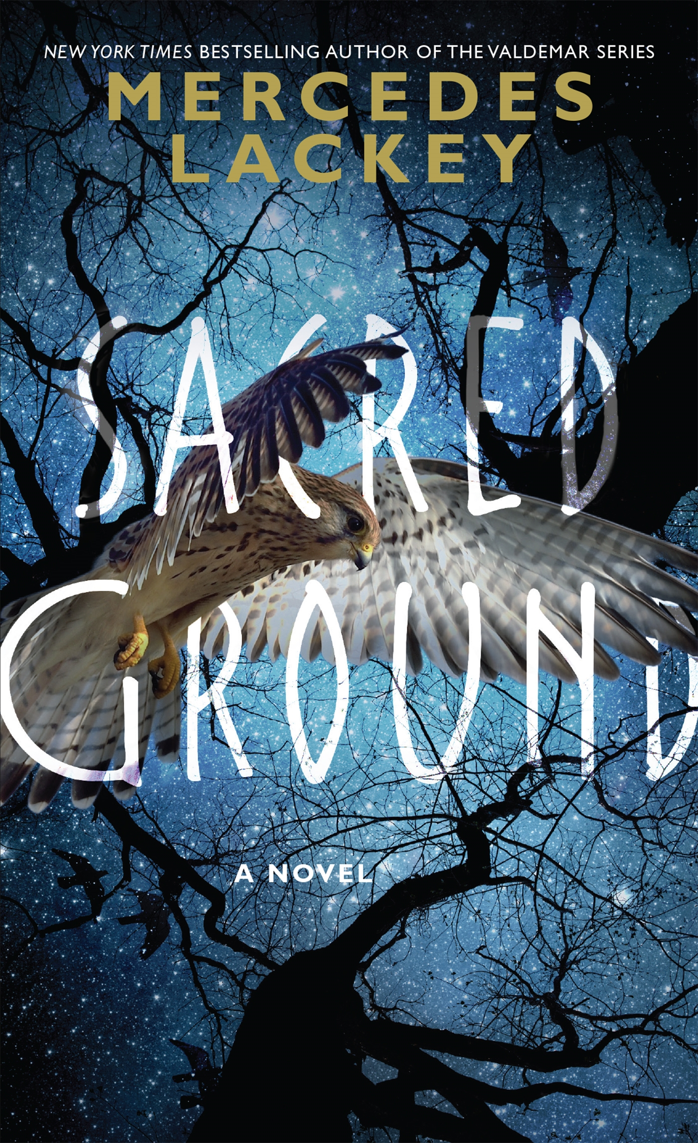 Cover Image of Sacred Ground
