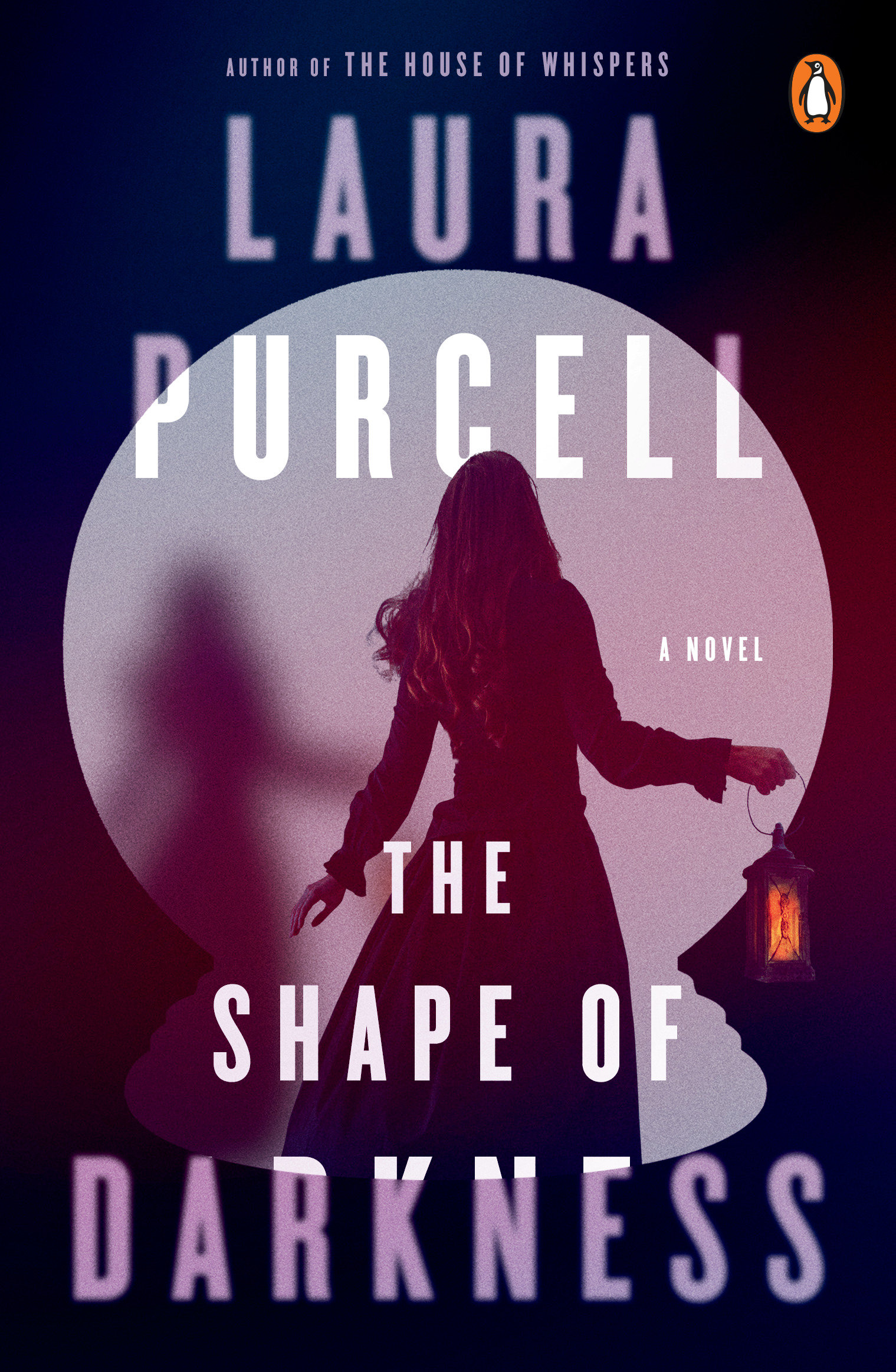 The Shape of Darkness A Novel